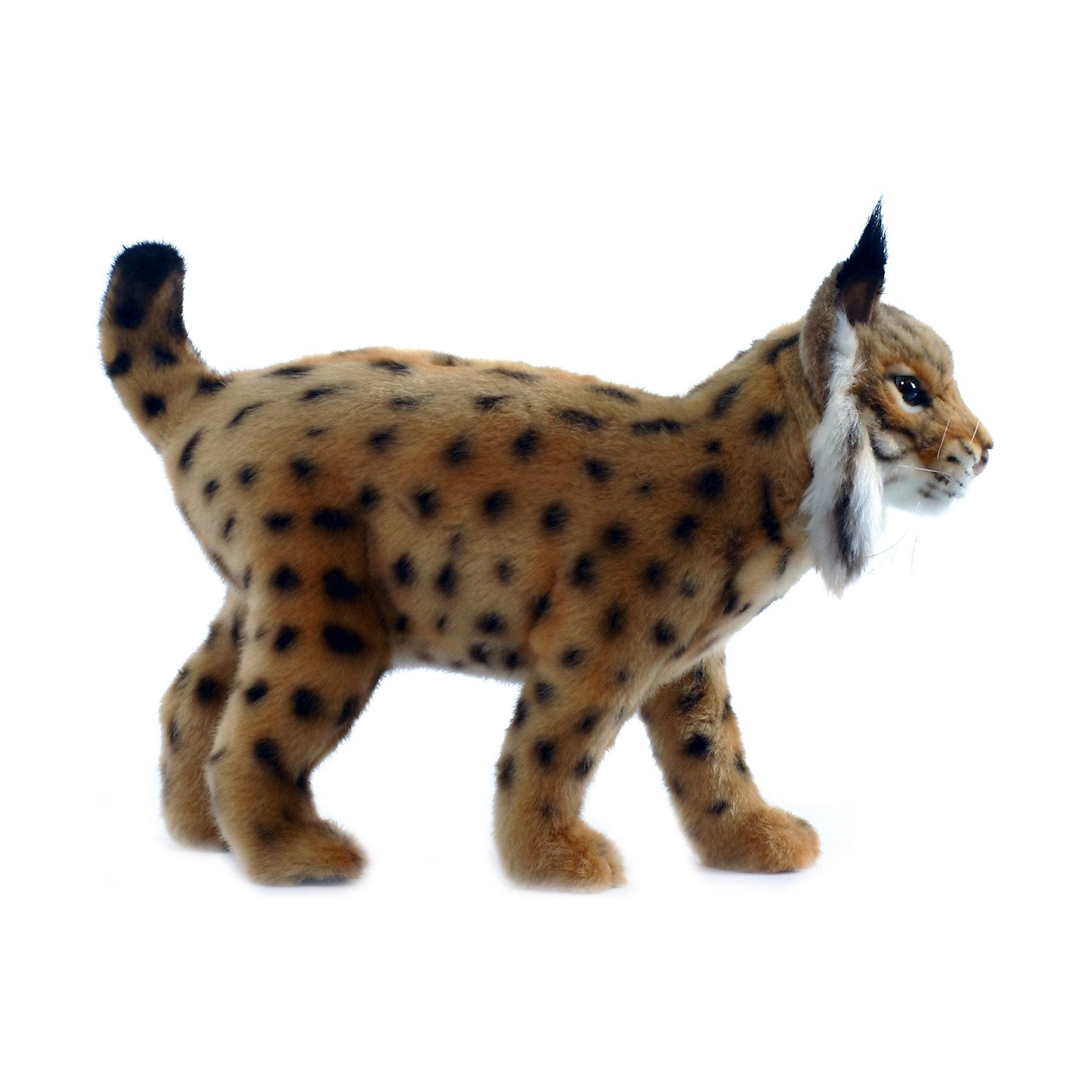 Hansa Испанская рысь, 35 см мягкие игрушки hansa сурок с детенышем 35 см