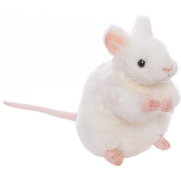 Белая мышь, 16 смМягкие игрушки животные<br>Белая мышь, 16 см – игрушка от знаменитого бренда Hansa, специализирующегося на выпуске мягких игрушек с высокой степенью натуралистичности. Внешний вид игрушечной белой мыши полностью соответствует реальному прототипу. Игрушка выполнена из белого меха с коротким ворсом, обладает гипоаллергенными свойствами, лапки, хвостик и ушки – текстильные. Внутри имеется металлический каркас, который позволяет изменять положение. Игрушка относится к серии Домашние животные. <br>Мягкие игрушки от Hansa подходят для сюжетно-ролевых игр или для обучающих игр. Кроме того, их можно использовать в качестве интерьерных игрушек. Игрушки от Hansa будут радовать вашего ребенка долгое время, так как ручная работа и качественные материалы гарантируют их долговечность и прочность.<br><br>Дополнительная информация:<br><br>- Вид игр: сюжетно-ролевые игры, коллекционирование, интерьерные игрушки<br>- Предназначение: для дома, для детских развивающих центров, для детских садов<br>- Материал: искусственный мех, наполнитель ? полиэфирное волокно<br>- Размер (ДхШхВ): 16*12*14 см<br>- Вес: 220 г<br>- Особенности ухода: сухая чистка при помощи пылесоса или щетки для одежды<br><br>Подробнее:<br><br>• Для детей в возрасте: от 3 лет <br>• Страна производитель: Филиппины<br>• Торговый бренд: Hansa<br><br>Белую мышь, 16 см можно купить в нашем интернет-магазине.<br><br>Ширина мм: 16<br>Глубина мм: 12<br>Высота мм: 14<br>Вес г: 220<br>Возраст от месяцев: 36<br>Возраст до месяцев: 2147483647<br>Пол: Унисекс<br>Возраст: Детский<br>SKU: 4927207