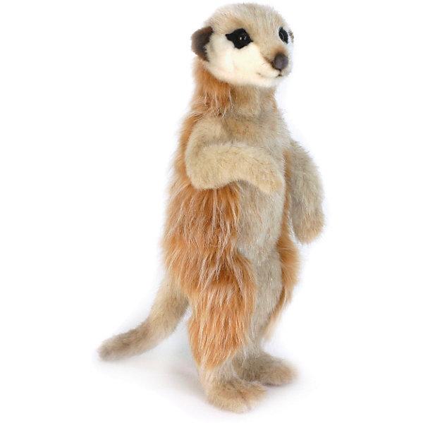Сурикат, 33 смМягкие игрушки животные<br>Сурикат, 33 см – игрушка от знаменитого бренда Hansa, специализирующегося на выпуске мягких игрушек с высокой степенью натуралистичности. Внешний вид игрушки полностью соответствует реальному прототипу – сурикату. Он выполнен из искусственного меха с разной длиной ворса. Окрас меха выполнен в оранжево-коричневом цвете. Внутри имеется металлический каркас, который позволяет изменять положение. <br>Игрушка относится к серии Дикие животные. Выполнена из искусственного меха, обладающего гипоаллергенными свойствами.   <br>Мягкие игрушки от Hansa подходят для сюжетно-ролевых игр, для обучающих игр, направленных на знакомство с животным миром дикой природы. Кроме того, их можно использовать в качестве интерьерных игрушек. Коллекция из нескольких игрушек позволяет создать свой домашний зоопарк, который будет радовать вашего ребенка долгое время, так как ручная работа и качественные материалы гарантируют их долговечность и прочность.<br><br>Дополнительная информация:<br><br>- Вид игр: сюжетно-ролевые игры, коллекционирование, интерьерные игрушки<br>- Предназначение: для дома, для детских развивающих центров, для детских садов<br>- Материал: искусственный мех, наполнитель ? полиэфирное волокно<br>- Размер (ДхШхВ): 15*33*13 см<br>- Вес: 375 г<br>- Особенности ухода: сухая чистка при помощи пылесоса или щетки для одежды<br><br>Подробнее:<br><br>• Для детей в возрасте: от 3 лет <br>• Страна производитель: Филиппины<br>• Торговый бренд: Hansa<br><br>Суриката, 33 см можно купить в нашем интернет-магазине.<br>Ширина мм: 15; Глубина мм: 33; Высота мм: 13; Вес г: 375; Возраст от месяцев: 36; Возраст до месяцев: 2147483647; Пол: Унисекс; Возраст: Детский; SKU: 4927208;
