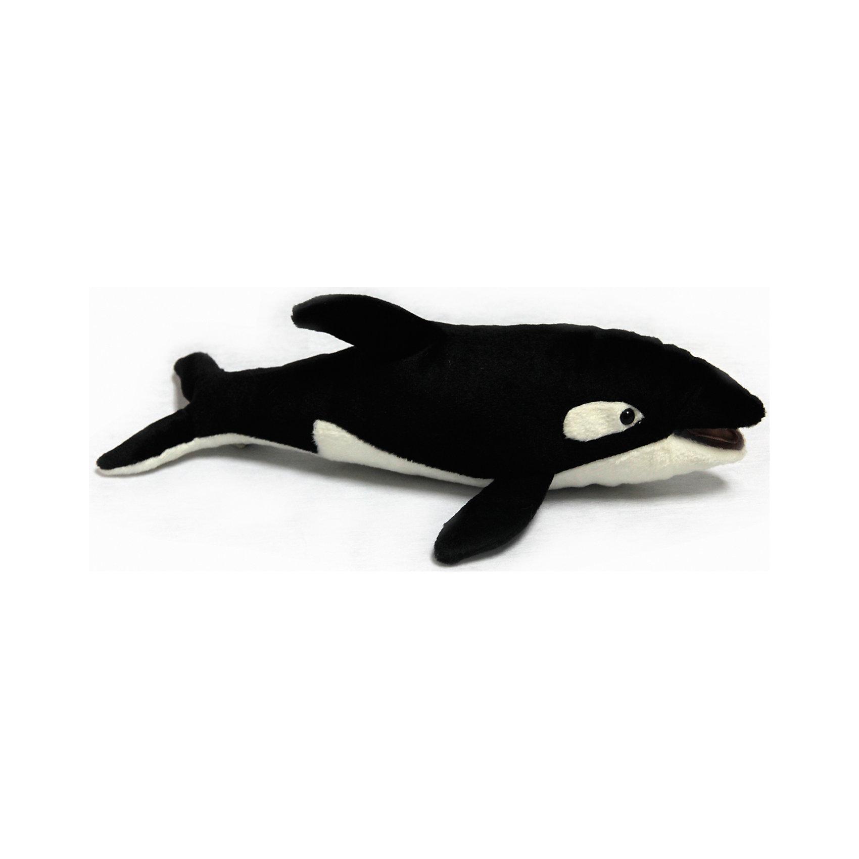 Косатка, 33 смКосатка, 33 см – игрушка от знаменитого бренда Hansa, специализирующегося на выпуске мягких игрушек с высокой степенью натуралистичности. Внешний вид игрушки полностью соответствует своему реальному прототипу – косатке. Она выполнена из искусственного меха черного и белого цвета с коротким ворсом. Использованные материалы обладают гипоаллергенными свойствами. Внутри игрушки имеется металлический каркас, позволяющий изменять положение. <br>Игрушка относится к серии Дикие животные. <br>Мягкие игрушки от Hansa подходят для сюжетно-ролевых игр, для обучающих игр, направленных на знакомство с животным миром дикой природы. Кроме того, их можно использовать в качестве интерьерных игрушек. Коллекция из нескольких игрушек позволяет создать свой домашний зоопарк, который будет радовать вашего ребенка долгое время, так как ручная работа и качественные материалы гарантируют их долговечность и прочность.<br><br>Дополнительная информация:<br><br>- Вид игр: сюжетно-ролевые игры, коллекционирование, интерьерные игрушки<br>- Предназначение: для дома, для детских развивающих центров, для детских садов<br>- Материал: искусственный мех, наполнитель ? полиэфирное волокно<br>- Размер (ДхШхВ): 33*11*16 см<br>- Вес: 100 г<br>- Особенности ухода: сухая чистка при помощи пылесоса или щетки для одежды<br><br>Подробнее:<br><br>• Для детей в возрасте: от 3 лет <br>• Страна производитель: Филиппины<br>• Торговый бренд: Hansa<br><br>Косатку, 33 см можно купить в нашем интернет-магазине.<br><br>Ширина мм: 33<br>Глубина мм: 11<br>Высота мм: 16<br>Вес г: 100<br>Возраст от месяцев: 36<br>Возраст до месяцев: 2147483647<br>Пол: Унисекс<br>Возраст: Детский<br>SKU: 4927222