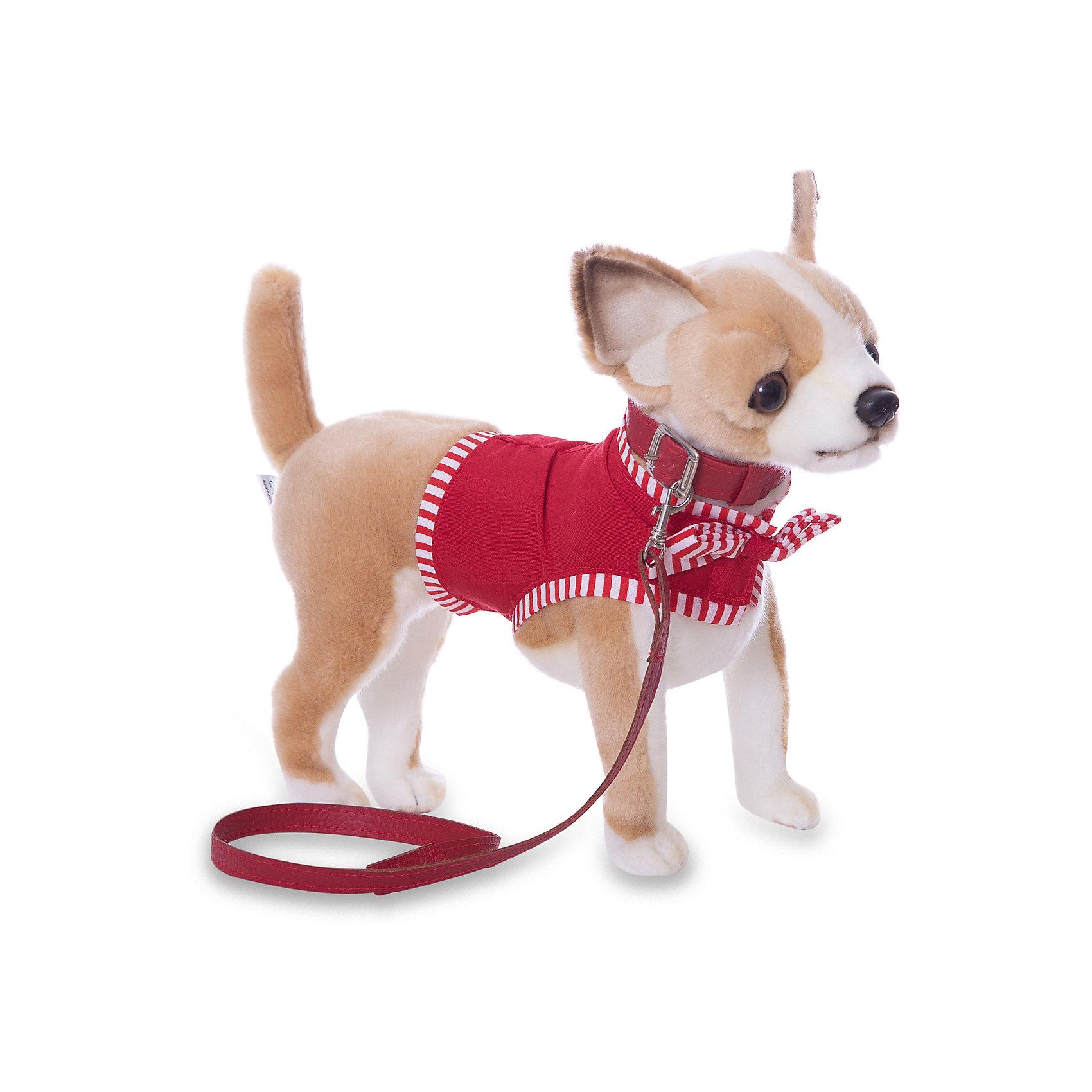 Чихуахуа, 27 смЧихуахуа, 27 см – игрушка от знаменитого бренда Hansa, специализирующегося на выпуске мягких игрушек с высокой степенью натуралистичности. Внешний вид игрушечной собаки полностью соответствует своему реальному прототипу – собаке породы Чихуахуа. Она выполнена из искусственного меха светло-коричневого цвета с коротким ворсом, грудка и внутренняя часть лапок – из белого меха. В комплекте с игрушкой имеется ошейник, поводок и легкая курточка для собаки. Использованные материалы обладают гипоаллергенными свойствами. Внутри игрушки имеется металлический каркас, позволяющий изменять положение. <br>Игрушка относится к серии Домашние животные. <br>Мягкие игрушки от Hansa подходят для сюжетно-ролевых игр, для обучающих игр, направленных на знакомство с миром живой природы. Кроме того, их можно использовать в качестве интерьерных игрушек. Представленные у торгового бренда разнообразие игрушечных собак позволяет собрать свою коллекцию пород, которая будет радовать вашего ребенка долгое время, так как ручная работа и качественные материалы гарантируют их долговечность и прочность.<br><br>Дополнительная информация:<br><br>- Вид игр: сюжетно-ролевые игры, коллекционирование, интерьерные игрушки<br>- Предназначение: для дома, для детских развивающих центров, для детских садов<br>- Материал: искусственный мех, текстиль, наполнитель ? полиэфирное волокно<br>- Размер (ДхШхВ): 27*24*11 см<br>- Вес: 900 г<br>- Особенности ухода: сухая чистка при помощи пылесоса или щетки для одежды<br><br>Подробнее:<br><br>• Для детей в возрасте: от 3 лет <br>• Страна производитель: Филиппины<br>• Торговый бренд: Hansa<br><br>Чихуахуа, 27 см можно купить в нашем интернет-магазине.<br><br>Ширина мм: 27<br>Глубина мм: 24<br>Высота мм: 11<br>Вес г: 600<br>Возраст от месяцев: 36<br>Возраст до месяцев: 2147483647<br>Пол: Унисекс<br>Возраст: Детский<br>SKU: 4927229