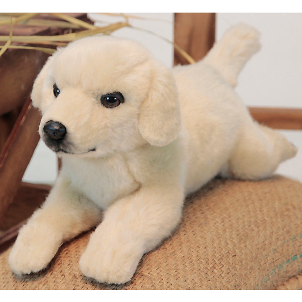 Золотистый Лабрадор, 31 смМягкие игрушки животные<br>Золотистый Лабрадор, 31 см – игрушка от знаменитого бренда Hansa, специализирующегося на выпуске мягких игрушек с высокой степенью натуралистичности. Внешний вид игрушечной собаки полностью соответствует своему реальному прототипу – собаке породы Лабрадор. Она выполнена из искусственного меха молочного цвета с коротким ворсом. Использованные материалы обладают гипоаллергенными свойствами. Внутри игрушки имеется металлический каркас, позволяющий изменять положение. <br>Игрушка относится к серии Домашние животные. <br>Мягкие игрушки от Hansa подходят для сюжетно-ролевых игр, для обучающих игр, направленных на знакомство с миром живой природы. Кроме того, их можно использовать в качестве интерьерных игрушек. Представленные у торгового бренда разнообразие игрушечных собак позволяет собрать свою коллекцию пород, которая будет радовать вашего ребенка долгое время, так как ручная работа и качественные материалы гарантируют их долговечность и прочность.<br><br>Дополнительная информация:<br><br>- Вид игр: сюжетно-ролевые игры, коллекционирование, интерьерные игрушки<br>- Предназначение: для дома, для детских развивающих центров, для детских садов<br>- Материал: искусственный мех, наполнитель ? полиэфирное волокно<br>- Размер (ДхШхВ): 15*11*31 см<br>- Вес: 420 г<br>- Особенности ухода: сухая чистка при помощи пылесоса или щетки для одежды<br><br>Подробнее:<br><br>• Для детей в возрасте: от 3 лет <br>• Страна производитель: Филиппины<br>• Торговый бренд: Hansa<br><br>Золотистого Лабрадора, 31 см можно купить в нашем интернет-магазине.<br><br>Ширина мм: 15<br>Глубина мм: 11<br>Высота мм: 31<br>Вес г: 420<br>Возраст от месяцев: 36<br>Возраст до месяцев: 2147483647<br>Пол: Унисекс<br>Возраст: Детский<br>SKU: 4927230