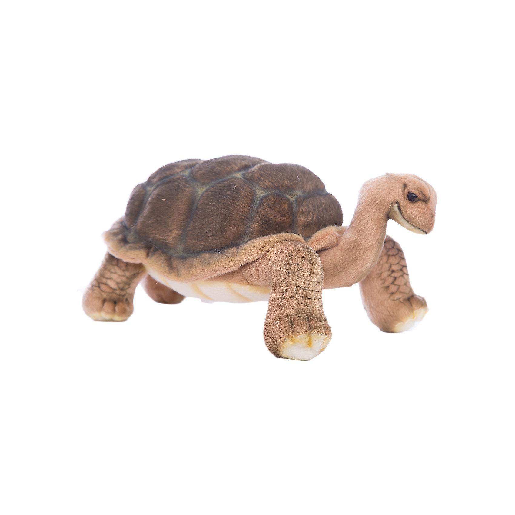 Галапагосская черепаха, 30 смГалапагосская черепаха, 30 см – игрушка от знаменитого бренда Hansa, специализирующегося на выпуске мягких игрушек с высокой степенью натуралистичности. Внешний вид игрушечной черепахи полностью соответствует реальному прототипу. Она выполнена из искусственного меха с коротким ворсом, окрашенным в оттенки реального прототипа. Использованные материалы обладают гипоаллергенными свойствами. Внутри игрушки имеется металлический каркас, позволяющий изменять положение. <br>Игрушка относится к серии Дикие животные. <br>Мягкие игрушки от Hansa подходят для сюжетно-ролевых игр, для обучающих игр, направленных на знакомство с животным миром дикой природы. Кроме того, их можно использовать в качестве интерьерных игрушек. Коллекция из нескольких игрушек позволяет создать свой домашний зоопарк, который будет радовать вашего ребенка долгое время, так как ручная работа и качественные материалы гарантируют их долговечность и прочность.<br><br>Дополнительная информация:<br><br>- Вид игр: сюжетно-ролевые игры, коллекционирование, интерьерные игрушки<br>- Предназначение: для дома, для детских развивающих центров, для детских садов<br>- Материал: искусственный мех, пластик, наполнитель ? полиэфирное волокно<br>- Размер (ДхШхВ): 16*16*30 см<br>- Вес: 510 г<br>- Особенности ухода: сухая чистка при помощи пылесоса или щетки для одежды<br><br>Подробнее:<br><br>• Для детей в возрасте: от 3 лет <br>• Страна производитель: Филиппины<br>• Торговый бренд: Hansa<br><br>Галапагосскую черепаху, 30 см можно купить в нашем интернет-магазине.<br><br>Ширина мм: 16<br>Глубина мм: 16<br>Высота мм: 30<br>Вес г: 510<br>Возраст от месяцев: 36<br>Возраст до месяцев: 2147483647<br>Пол: Унисекс<br>Возраст: Детский<br>SKU: 4927231
