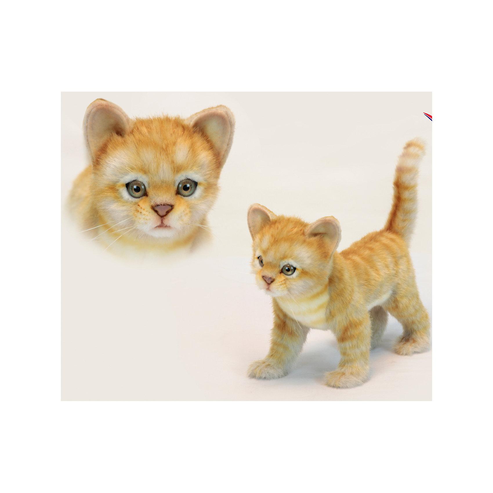 Котёнок стоящий рыжий, 30 смКошки и собаки<br>Котёнок стоящий рыжий, 30 см – игрушка от знаменитого бренда Hansa, специализирующегося на выпуске мягких игрушек с высокой степенью натуралистичности. Внешний вид игрушечного котенка полностью соответствует своему реальному прототипу. Он выполнен из искусственного меха с ворсом средней длины. Окрас игрушки имитирует окрас настоящего животного: рыжий и полосатый. Использованные материалы обладают гипоаллергенными свойствами. Внутри игрушки имеется металлический каркас, позволяющий изменять положение. <br>Игрушка относится к серии Домашние животные. <br>Мягкие игрушки от Hansa подходят для сюжетно-ролевых игр, для обучающих игр, направленных на знакомство с миром живой природы. Кроме того, их можно использовать в качестве интерьерных игрушек. Представленные у торгового бренда разнообразие игрушечных кошек позволяет собрать свою коллекцию пород, которая будет радовать вашего ребенка долгое время, так как ручная работа и качественные материалы гарантируют их долговечность и прочность.<br><br>Дополнительная информация:<br><br>- Вид игр: сюжетно-ролевые игры, коллекционирование, интерьерные игрушки<br>- Предназначение: для дома, для детских развивающих центров, для детских садов<br>- Материал: искусственный мех, наполнитель ? полиэфирное волокно<br>- Размер (ДхШхВ): 30*23*14 см<br>- Вес: 780 г<br>- Особенности ухода: сухая чистка при помощи пылесоса или щетки для одежды<br><br>Подробнее:<br><br>• Для детей в возрасте: от 3 лет <br>• Страна производитель: Филиппины<br>• Торговый бренд: Hansa<br><br>Котёнка стоящего рыжего, 30 см можно купить в нашем интернет-магазине.<br><br>Ширина мм: 30<br>Глубина мм: 23<br>Высота мм: 14<br>Вес г: 740<br>Возраст от месяцев: 36<br>Возраст до месяцев: 2147483647<br>Пол: Унисекс<br>Возраст: Детский<br>SKU: 4927233