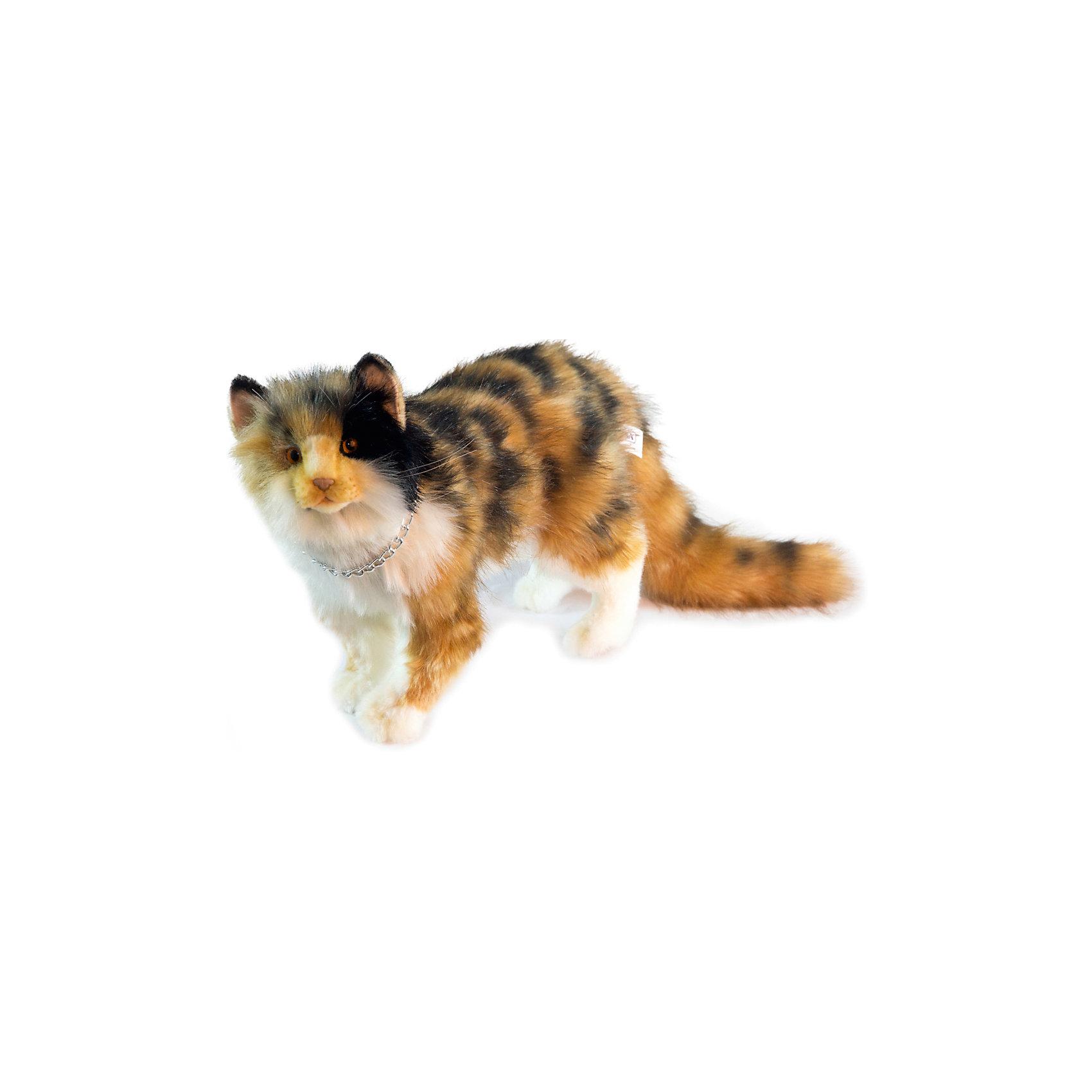 Кошка Бетти, 62 смКошка Бетти, 62 см – игрушка от знаменитого бренда Hansa, специализирующегося на выпуске мягких игрушек с высокой степенью натуралистичности. Внешний вид игрушечной кошки полностью соответствует своему реальному прототипу. Она выполнена из искусственного меха с длинным ворсом. Окрас игрушки имитирует окрас настоящего животного: пестрая шерстка из сочетания черного, ражего, белого цветов. Использованные материалы обладают гипоаллергенными свойствами. Внутри игрушки имеется металлический каркас, позволяющий изменять положение. <br>Игрушка относится к серии Домашние животные. <br>Мягкие игрушки от Hansa подходят для сюжетно-ролевых игр, для обучающих игр, направленных на знакомство с миром живой природы. Кроме того, их можно использовать в качестве интерьерных игрушек. Представленные у торгового бренда разнообразие игрушечных кошек позволяет собрать свою коллекцию пород, которая будет радовать вашего ребенка долгое время, так как ручная работа и качественные материалы гарантируют их долговечность и прочность.<br><br>Дополнительная информация:<br><br>- Вид игр: сюжетно-ролевые игры, коллекционирование, интерьерные игрушки<br>- Предназначение: для дома, для детских развивающих центров, для детских садов<br>- Материал: искусственный мех, наполнитель ? полиэфирное волокно<br>- Размер (ДхШхВ): 31*17*62 см<br>- Вес: 1 кг 200 г<br>- Особенности ухода: сухая чистка при помощи пылесоса или щетки для одежды<br><br>Подробнее:<br><br>• Для детей в возрасте: от 3 лет <br>• Страна производитель: Филиппины<br>• Торговый бренд: Hansa<br><br>Кошку Бетти, 62 см можно купить в нашем интернет-магазине.<br><br>Ширина мм: 31<br>Глубина мм: 17<br>Высота мм: 62<br>Вес г: 1200<br>Возраст от месяцев: 36<br>Возраст до месяцев: 2147483647<br>Пол: Унисекс<br>Возраст: Детский<br>SKU: 4927234