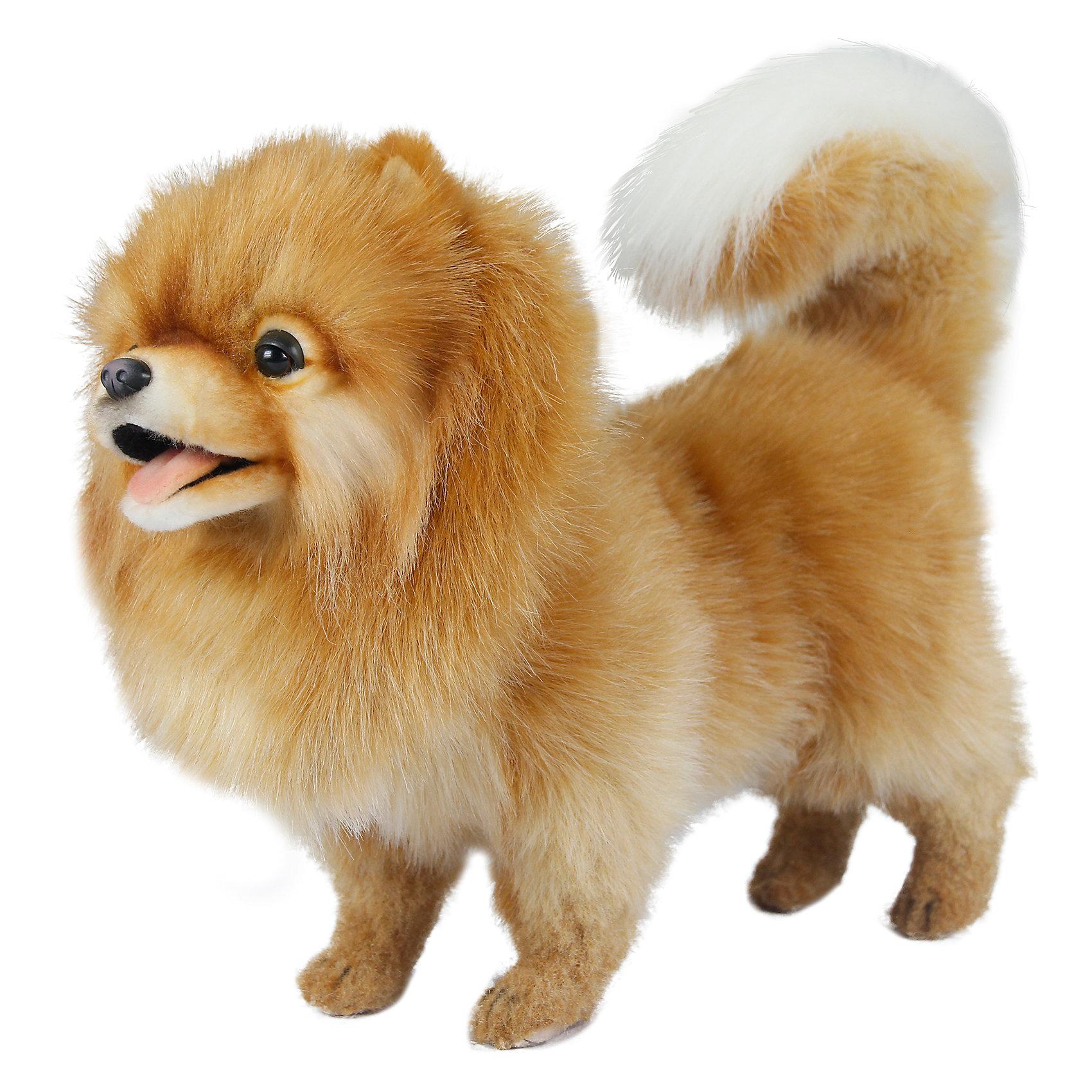 Шпиц, 28 смКошки и собаки<br>Шпиц, 28 см – игрушка от знаменитого бренда Hansa, специализирующегося на выпуске мягких игрушек с высокой степенью натуралистичности. Внешний вид игрушечной собаки полностью соответствует своему реальному прототипу – собаке породы Шпиц. Она выполнена из искусственного меха бежевого цвета с длинным ворсом, внутренняя часть хвостика – из белого меха. Использованные материалы обладают гипоаллергенными свойствами. Внутри игрушки имеется металлический каркас, позволяющий изменять положение. <br>Игрушка относится к серии Домашние животные. <br>Мягкие игрушки от Hansa подходят для сюжетно-ролевых игр, для обучающих игр, направленных на знакомство с миром живой природы. Кроме того, их можно использовать в качестве интерьерных игрушек. Представленные у торгового бренда разнообразие игрушечных собак позволяет собрать свою коллекцию пород, которая будет радовать вашего ребенка долгое время, так как ручная работа и качественные материалы гарантируют их долговечность и прочность.<br><br>Дополнительная информация:<br><br>- Вид игр: сюжетно-ролевые игры, коллекционирование, интерьерные игрушки<br>- Предназначение: для дома, для детских развивающих центров, для детских садов<br>- Материал: искусственный мех, наполнитель ? полиэфирное волокно<br>- Размер (ДхШхВ): 28*16*36 см<br>- Вес: 840 г<br>- Особенности ухода: сухая чистка при помощи пылесоса или щетки для одежды<br><br>Подробнее:<br><br>• Для детей в возрасте: от 3 лет <br>• Страна производитель: Филиппины<br>• Торговый бренд: Hansa<br><br>Шпица, 28 см можно купить в нашем интернет-магазине.<br><br>Ширина мм: 28<br>Глубина мм: 16<br>Высота мм: 36<br>Вес г: 840<br>Возраст от месяцев: 36<br>Возраст до месяцев: 2147483647<br>Пол: Унисекс<br>Возраст: Детский<br>SKU: 4927235
