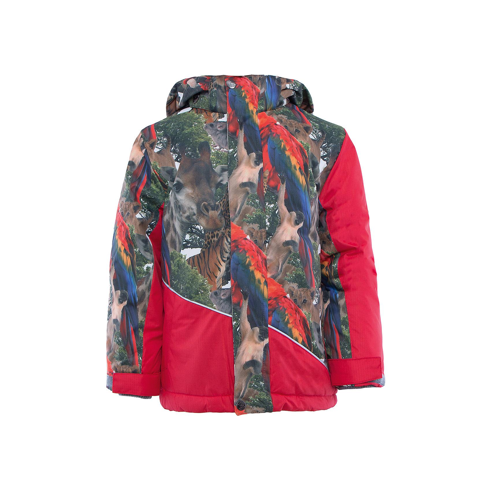 Куртка    HuppaВерхняя одежда<br>Куртка ALEX Huppa(Хуппа).<br><br>Утеплитель: 100% полиэстер, 300 гр.<br><br>Температурный режим: до -30 градусов. Степень утепления – высокая. <br><br>* Температурный режим указан приблизительно — необходимо, прежде всего, ориентироваться на ощущения ребенка. Температурный режим работает в случае соблюдения правила многослойности – использования флисовой поддевы и термобелья.<br><br>Согреет ребенка даже в очень холодную зиму, а необычный дизайн привлечет внимание и придаст уверенности в себе!<br><br>Особенности:<br>-синтетический утеплитель HuppaTherm отлично сохраняет форму, легко стирается и хорошо сохнет<br>-водонепроницаемая дышащая мембрана<br>-при проклеивании швов использована водостойкая лента для повышения водонепроницаемости<br>-прочная и долговечная ткань<br>-большой капюшон и вместительные карманы<br>-светоотражающие элементы для снижения вероятности несчастных случаев в темное время суток<br>-отстегивающийся капюшон<br><br>Дополнительная информация:<br>Материал: 100% полиэстер<br>Подкладка: флис, тафта - 100% полиэстер<br>Цвет: красный<br><br>Куртку ALEX Huppa(Хуппа) вы можете приобрести в нашем интернет-магазине.<br><br>Ширина мм: 356<br>Глубина мм: 10<br>Высота мм: 245<br>Вес г: 519<br>Цвет: красный<br>Возраст от месяцев: 36<br>Возраст до месяцев: 48<br>Пол: Унисекс<br>Возраст: Детский<br>Размер: 104,140,134,128,122,116,110<br>SKU: 4928273