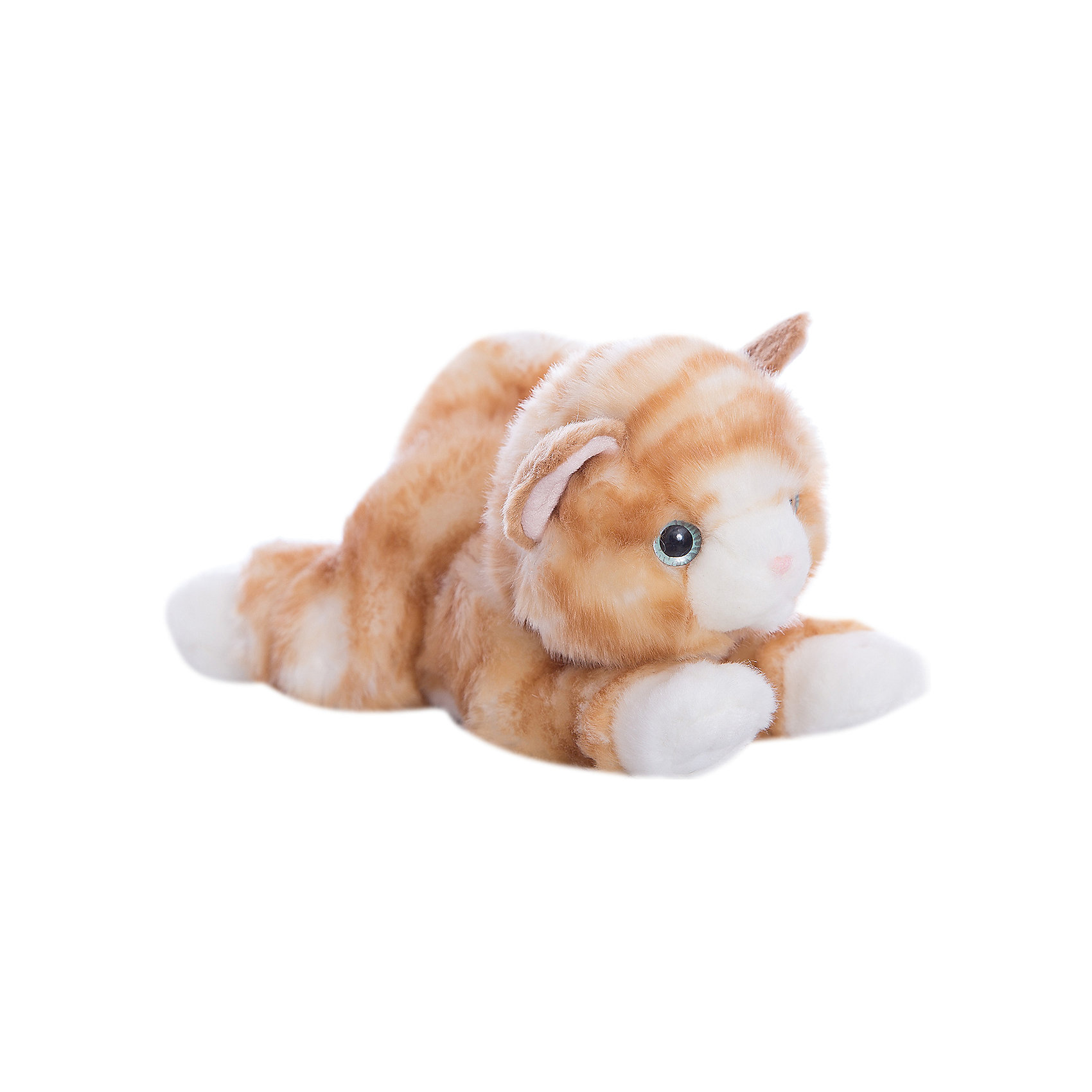 Мягкая игрушка Котик рыжий, 22см, AURORAКрасивый рыжий котик обязательно понравится Вашему ребенку! Котик невероятно мягкий, у него забавный хвостик и лапки и милый розовый носик, а еще, у котика очаровательные глазки.<br><br>Дополнительная информация:<br><br>- Возраст: от 3 лет.<br>- Материал: плюш, синтепон.<br>- Цвет: рыжий.<br>- Высота игрушки: 22 см.<br><br>Купить мягкую игрушку Котик можно в нашем магазине.<br><br>Ширина мм: 220<br>Глубина мм: 80<br>Высота мм: 120<br>Вес г: 179<br>Возраст от месяцев: 36<br>Возраст до месяцев: 120<br>Пол: Унисекс<br>Возраст: Детский<br>SKU: 4929029