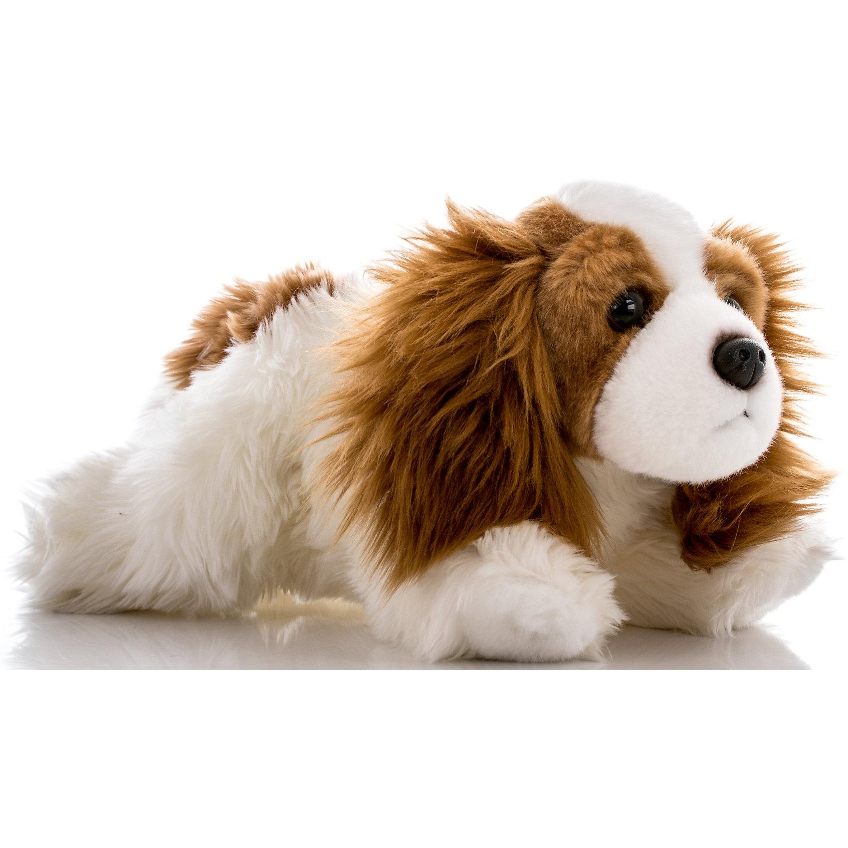 Мягкая игрушка Кинг чарльз спаниель, 28 см, AURORAКрасивый щенок с мягкой бело-коричневой шерсткой будет прекрасным подарком для Вашего ребенка!<br><br>Дополнительная информация:<br><br>- Возраст: от 3 лет.<br>- Материал: плюш, синтепон.<br>- Высота игрушки: 28 см.<br><br>Купить мягкую игрушку Кинг Чарльз Спаниель можно в нашем магазине.<br><br>Ширина мм: 130<br>Глубина мм: 260<br>Высота мм: 120<br>Вес г: 252<br>Возраст от месяцев: 36<br>Возраст до месяцев: 120<br>Пол: Унисекс<br>Возраст: Детский<br>SKU: 4929038