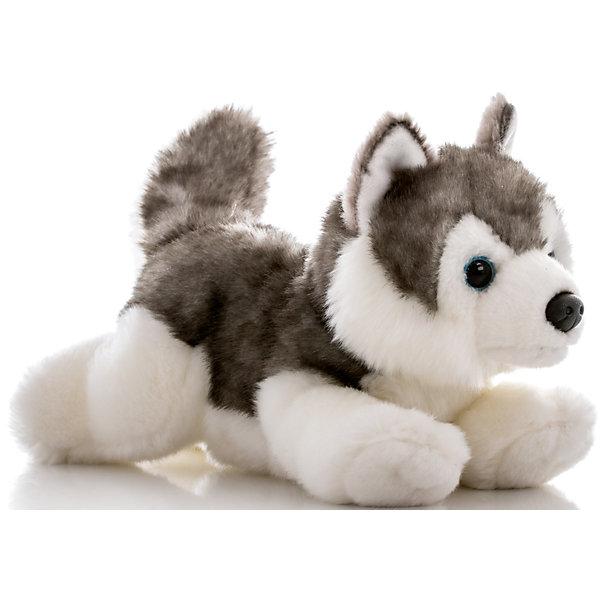Мягкая игрушка Лайка, 28 см, AURORAСимвол 2018 года: Собака<br>Красивый щенок с мягкой бело-серой шерсткой будет прекрасным подарком для Вашего ребенка!<br><br>Дополнительная информация:<br><br>- Возраст: от 3 лет.<br>- Материал: плюш, синтепон.<br>- Высота игрушки: 28 см.<br><br>Купить мягкую игрушку Лайка можно в нашем магазине.<br><br>Ширина мм: 130<br>Глубина мм: 250<br>Высота мм: 140<br>Вес г: 265<br>Возраст от месяцев: 36<br>Возраст до месяцев: 120<br>Пол: Унисекс<br>Возраст: Детский<br>SKU: 4929039