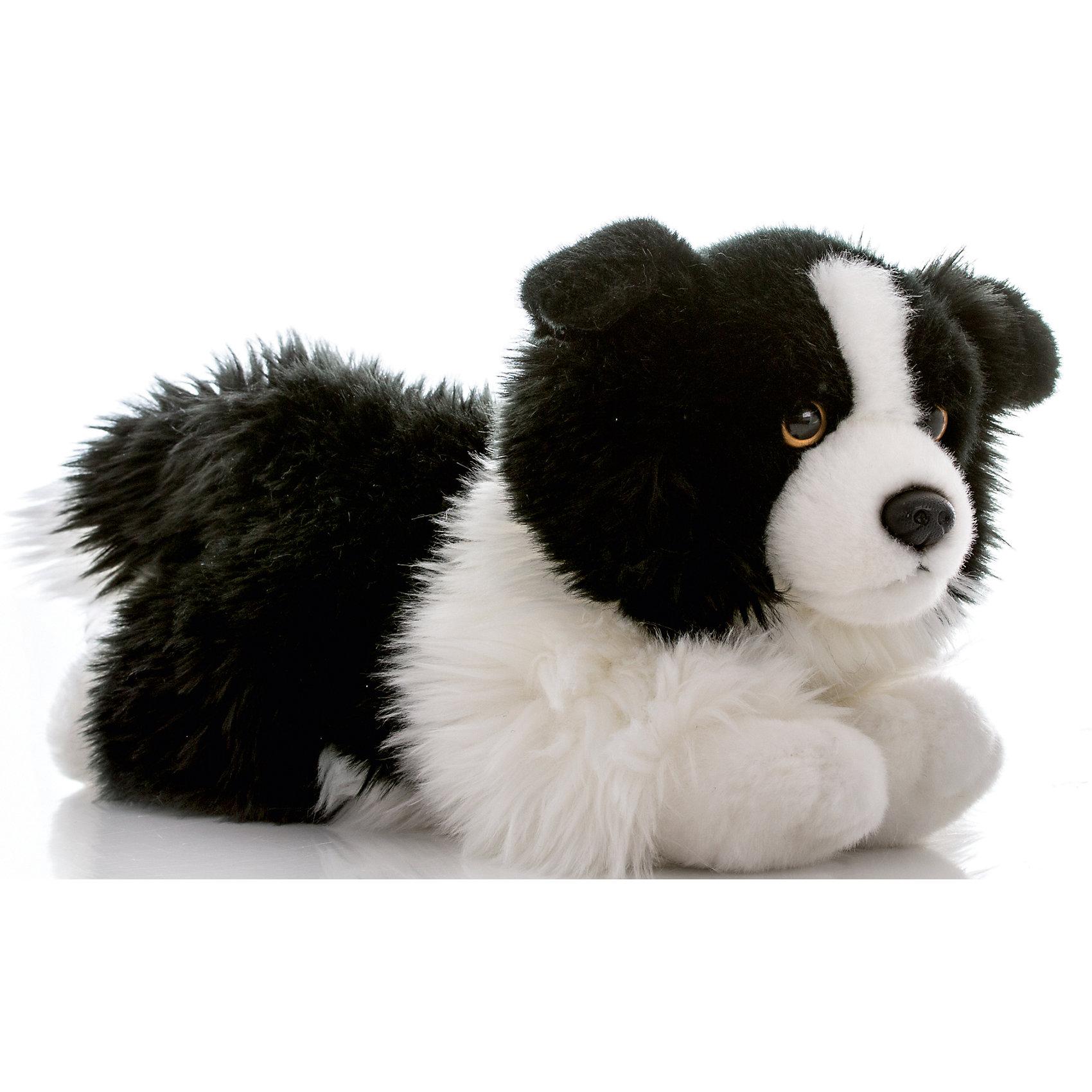 Мягкая игрушка Бордер-колли, 28 см, AURORAКошки и собаки<br>Красивый щенок с мягкой черно-белой шерсткой будет прекрасным подарком для Вашего ребенка!<br><br>Дополнительная информация:<br><br>- Возраст: от 3 лет.<br>- Материал: плюш, синтепон.<br>- Высота игрушки: 28 см.<br><br>Купить мягкую игрушку Бордер-колли можно в нашем магазине.<br><br>Ширина мм: 140<br>Глубина мм: 260<br>Высота мм: 140<br>Вес г: 254<br>Возраст от месяцев: 36<br>Возраст до месяцев: 120<br>Пол: Унисекс<br>Возраст: Детский<br>SKU: 4929041