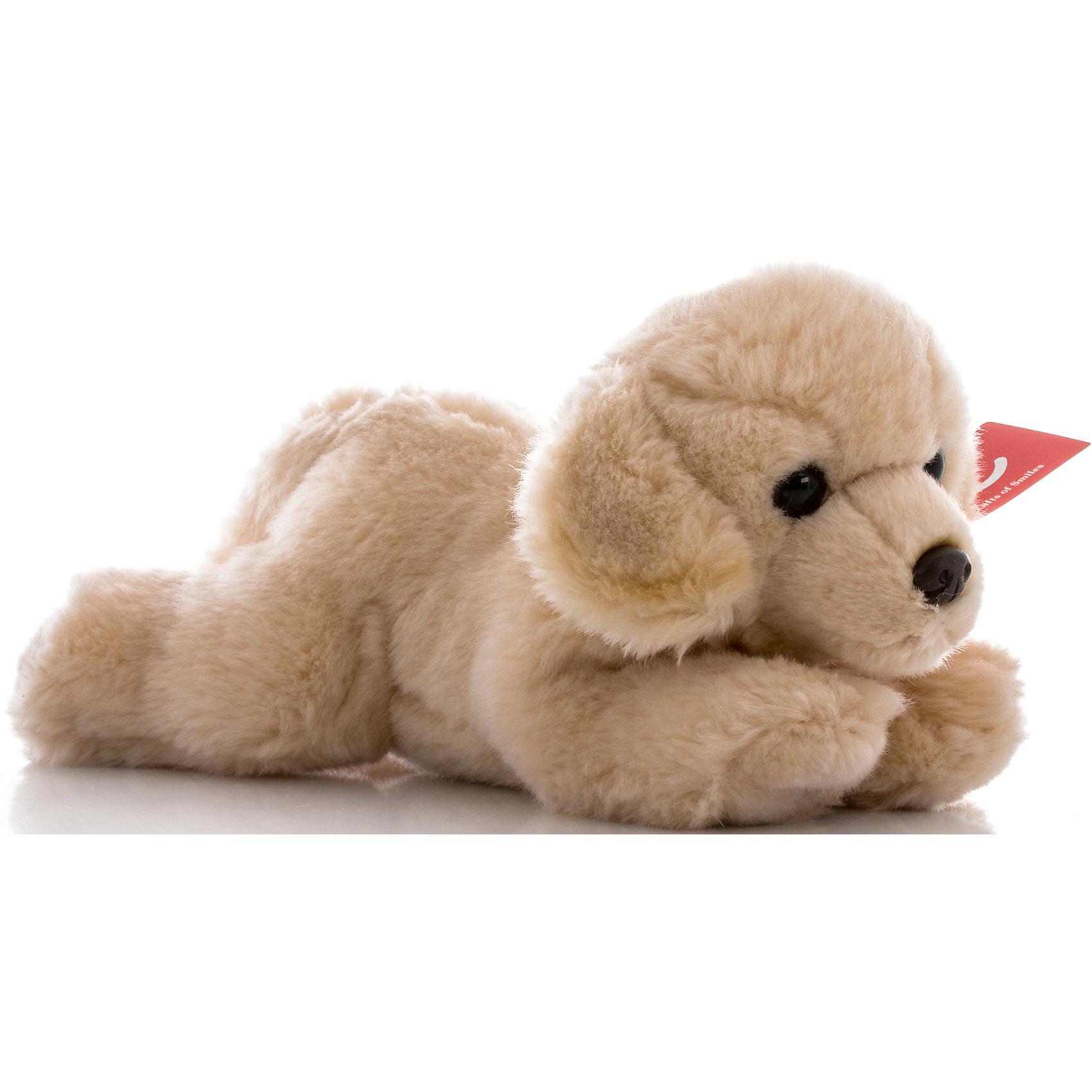 Мягкая игрушка Палевый лабрадор, 28 см, AURORAКрасивый щенок с мягкой кремовой шерсткой будет прекрасным подарком для Вашего ребенка!<br><br>Дополнительная информация:<br><br>- Возраст: от 3 лет.<br>- Материал: плюш, синтепон.<br>- Высота игрушки: 28 см.<br><br>Купить мягкую игрушку Палевый лабрадор можно в нашем магазине.<br><br>Ширина мм: 280<br>Глубина мм: 110<br>Высота мм: 140<br>Вес г: 253<br>Возраст от месяцев: 36<br>Возраст до месяцев: 120<br>Пол: Унисекс<br>Возраст: Детский<br>SKU: 4929042