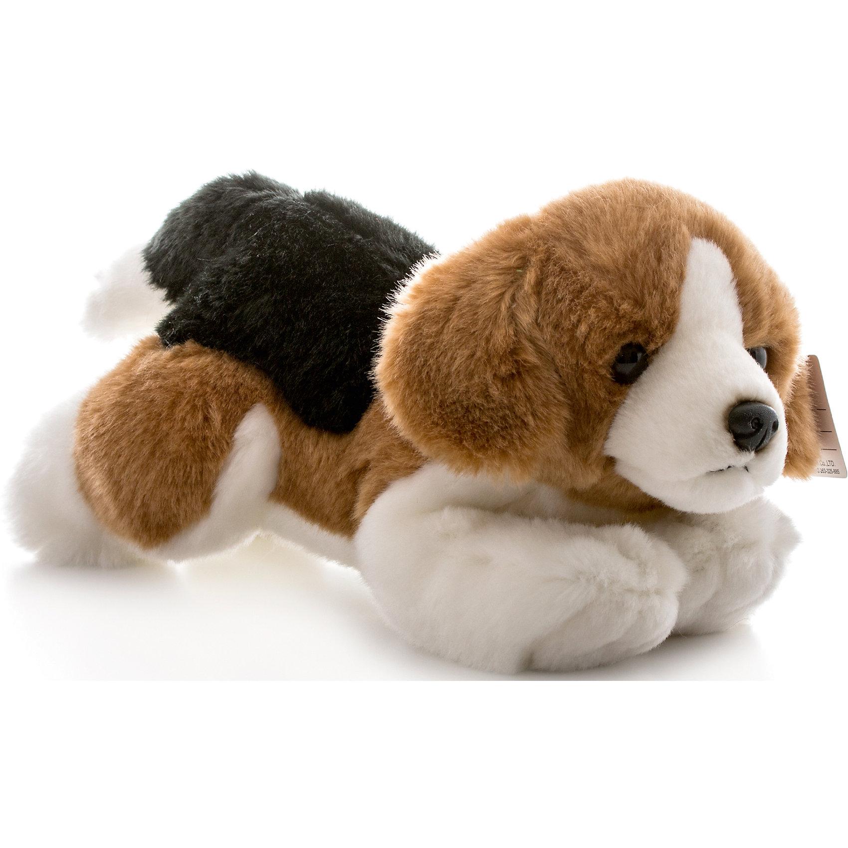 Мягкая игрушка Бигль, 28 см, AURORAКошки и собаки<br>Красивый трехцветный щенок с мягкой  шерсткой будет прекрасным подарком для Вашего ребенка!<br><br>Дополнительная информация:<br><br>- Возраст: от 3 лет.<br>- Материал: плюш, синтепон.<br>- Высота игрушки: 28 см.<br><br>Купить мягкую игрушку Бигль можно в нашем магазине.<br><br>Ширина мм: 280<br>Глубина мм: 110<br>Высота мм: 140<br>Вес г: 268<br>Возраст от месяцев: 36<br>Возраст до месяцев: 120<br>Пол: Унисекс<br>Возраст: Детский<br>SKU: 4929043