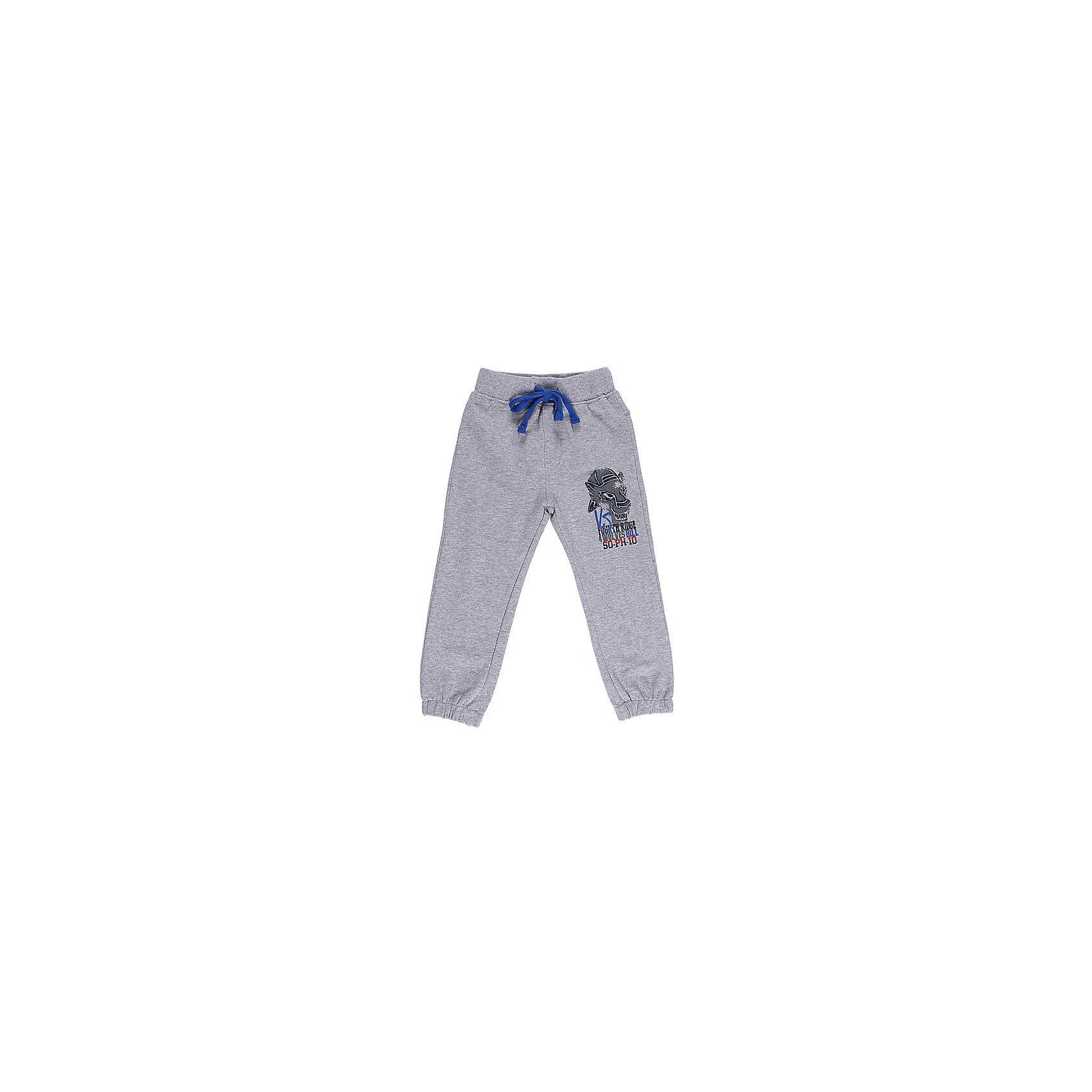 Брюки для мальчика Sweet BerryДжинсы и брючки<br>Спортивные брюки для мальчиков. Эластичный пояс с внутренней резинкой, с дополнительным хлопковым шнурком. Украшены принтом.<br>Состав:<br>95% хлопок 5% эластан<br><br>Ширина мм: 215<br>Глубина мм: 88<br>Высота мм: 191<br>Вес г: 336<br>Цвет: серый<br>Возраст от месяцев: 12<br>Возраст до месяцев: 15<br>Пол: Мужской<br>Возраст: Детский<br>Размер: 80,98,92,86<br>SKU: 4929982