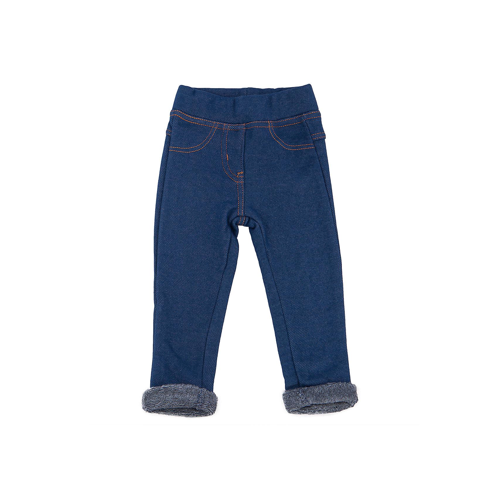 Брюки для девочки Sweet BerryЭта модель брюк-джеггинсов на меху отличается модным дизайном и универсальной расцветкой под джинс. Удачный крой обеспечит ребенку комфорт и тепло. Плотный материал делает вещь идеальной для прохладной погоды. Она хорошо прилегает к телу там, где нужно, и отлично сидит по фигуре. Натуральный хлопок в составе материала обеспечит коже возможность дышать и не вызовет аллергии. В поясе - мягкая резинка со шнурком.<br>Одежда от бренда Sweet Berry - это простой и выгодный способ одеть ребенка удобно и стильно. Всё изделия тщательно проработаны: швы - прочные, материал - качественный, фурнитура - подобранная специально для детей.<br><br>Дополнительная информация:<br><br>цвет: синий;<br>состав: 80% хлопок, 20% полиэстер, трикотаж;<br>в поясе - мягкая резинка.<br><br>Брюки для девочки от бренда Sweet Berry можно купить в нашем интернет-магазине.<br><br>Ширина мм: 215<br>Глубина мм: 88<br>Высота мм: 191<br>Вес г: 336<br>Цвет: синий<br>Возраст от месяцев: 24<br>Возраст до месяцев: 36<br>Пол: Женский<br>Возраст: Детский<br>Размер: 98,92,86,80<br>SKU: 4931378