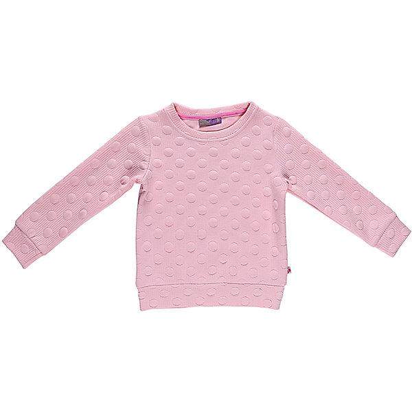 Толстовка для девочки Sweet BerryТолстовки<br>Эта толстовка для девочки отличается модным дизайном. Удачный крой обеспечит ребенку комфорт и тепло. Горлована изделия обработана мягкой резинкой, поэтому вещь плотно прилегает к телу там, где нужно, и отлично сидит по фигуре. Материал - плотный фактурный трикотаж.<br>Одежда от бренда Sweet Berry - это простой и выгодный способ одеть ребенка удобно и стильно. Всё изделия тщательно проработаны: швы - прочные, материал - качественный, фурнитура - подобранная специально для детей. <br><br>Дополнительная информация:<br><br>цвет: розовый;<br>материал: 60% хлопок, 40% полиэстер;<br>плотный фактурный трикотаж.<br><br>Толстовку для девочки от бренда Sweet Berry можно купить в нашем интернет-магазине.<br><br>Ширина мм: 190<br>Глубина мм: 74<br>Высота мм: 229<br>Вес г: 236<br>Цвет: розовый<br>Возраст от месяцев: 60<br>Возраст до месяцев: 72<br>Пол: Женский<br>Возраст: Детский<br>Размер: 116,104,98,128,122,110<br>SKU: 4931644