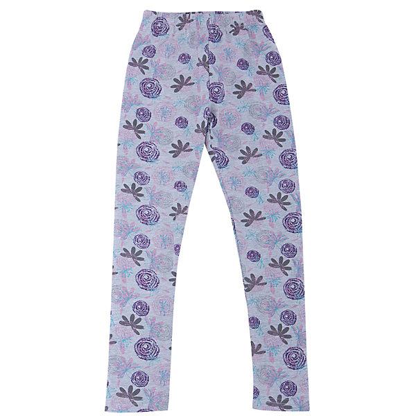Леггинсы для девочки Sweet BerryЛеггинсы<br>Леггинсы – удобная одежда для дома или занятий спортом. Приятный материал обеспечивает комфорт на протяжении всего времени ношения вещи. Модный принт – отличительная особенность модели. Пояс выполнен из внутренней резинки. Леггинсы не имеют твердых вставок, поэтому подходят в качестве варианта одежды для сна. Нежный цвет подойдет ко многим детским вещам. Материалы, использованные при изготовлении одежды, полностью безопасны для детей и отвечают всем требованиям по качеству продукции данной категории.<br><br>Дополнительная информация: <br><br>пояс на резинке;<br>модный принт;<br>прямой крой;<br>цвет: серый;<br>материал: хлопок 95%, эластан 5%.<br><br>Леггинсы для девочки от компании Sweet Berry можно приобрести в нашем магазине.<br>Ширина мм: 123; Глубина мм: 10; Высота мм: 149; Вес г: 209; Цвет: серый; Возраст от месяцев: 24; Возраст до месяцев: 36; Пол: Женский; Возраст: Детский; Размер: 98,104,128,122,116,110; SKU: 4931792;