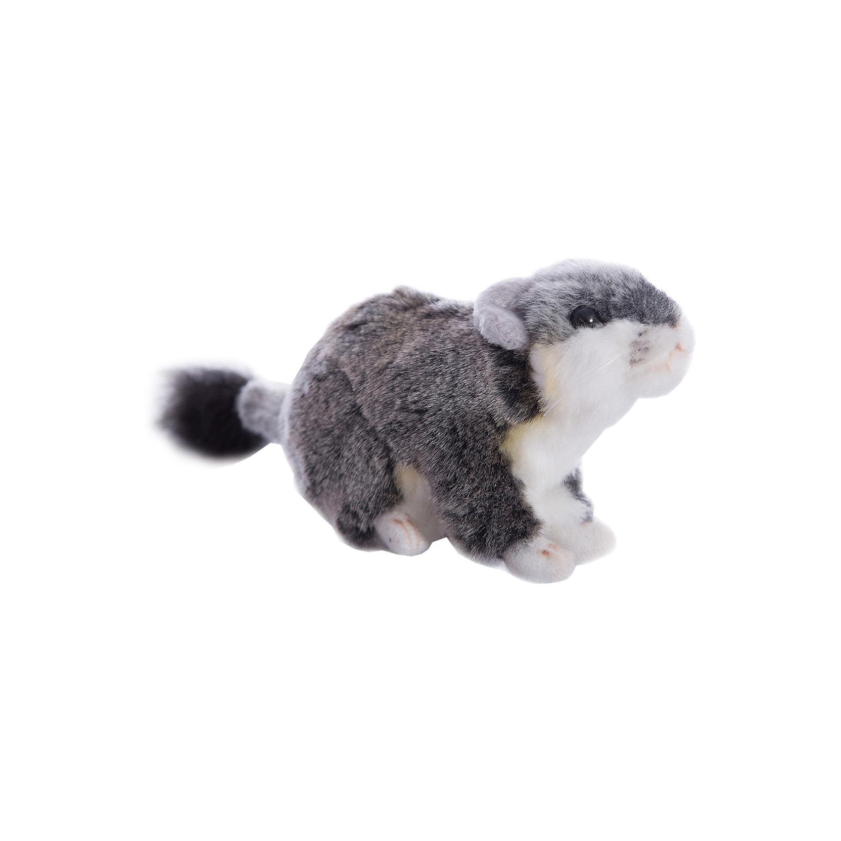 Хомячок джунгарский, 12 см, HansaМягкие игрушки животные<br>Хомячок джунгарский, 12 см – игрушка от знаменитого бренда Hansa, специализирующегося на выпуске мягких игрушек с высокой степенью натуралистичности. Внешний вид игрушки полностью соответствует реальному прототипу – русскому карликовому хомячку. Он выполнен из искусственного меха с коротким ворсом. Окрас шкурки соответствует окрасу животного – серая спинка и белая грудка. Использованные материалы обладают гипоаллергенными свойствами. Внутри игрушки имеется металлический каркас, позволяющий изменять положение. <br>Игрушка относится к серии Дикие животные. <br>Мягкие игрушки от Hansa подходят для сюжетно-ролевых игр, для обучающих игр, направленных на знакомство с животным миром дикой природы. Кроме того, их можно использовать в качестве интерьерных игрушек. Коллекция из нескольких игрушек позволяет создать свой домашний зоопарк, который будет радовать вашего ребенка долгое время, так как ручная работа и качественные материалы гарантируют их долговечность и прочность.<br><br>Дополнительная информация:<br><br>- Вид игр: сюжетно-ролевые игры, коллекционирование, интерьерные игрушки<br>- Предназначение: для дома, для детских развивающих центров, для детских садов<br>- Материал: искусственный мех, наполнитель ? полиэфирное волокно<br>- Размер (ДхШхВ): 12*8*7 см<br>- Вес: 120 г<br>- Особенности ухода: сухая чистка при помощи пылесоса или щетки для одежды<br><br>Подробнее:<br><br>• Для детей в возрасте: от 3 лет <br>• Страна производитель: Филиппины<br>• Торговый бренд: Hansa<br><br>Хомячка джунгарского, 12 см можно купить в нашем интернет-магазине.<br><br>Ширина мм: 12<br>Глубина мм: 8<br>Высота мм: 7<br>Вес г: 120<br>Возраст от месяцев: 36<br>Возраст до месяцев: 2147483647<br>Пол: Унисекс<br>Возраст: Детский<br>SKU: 4935401