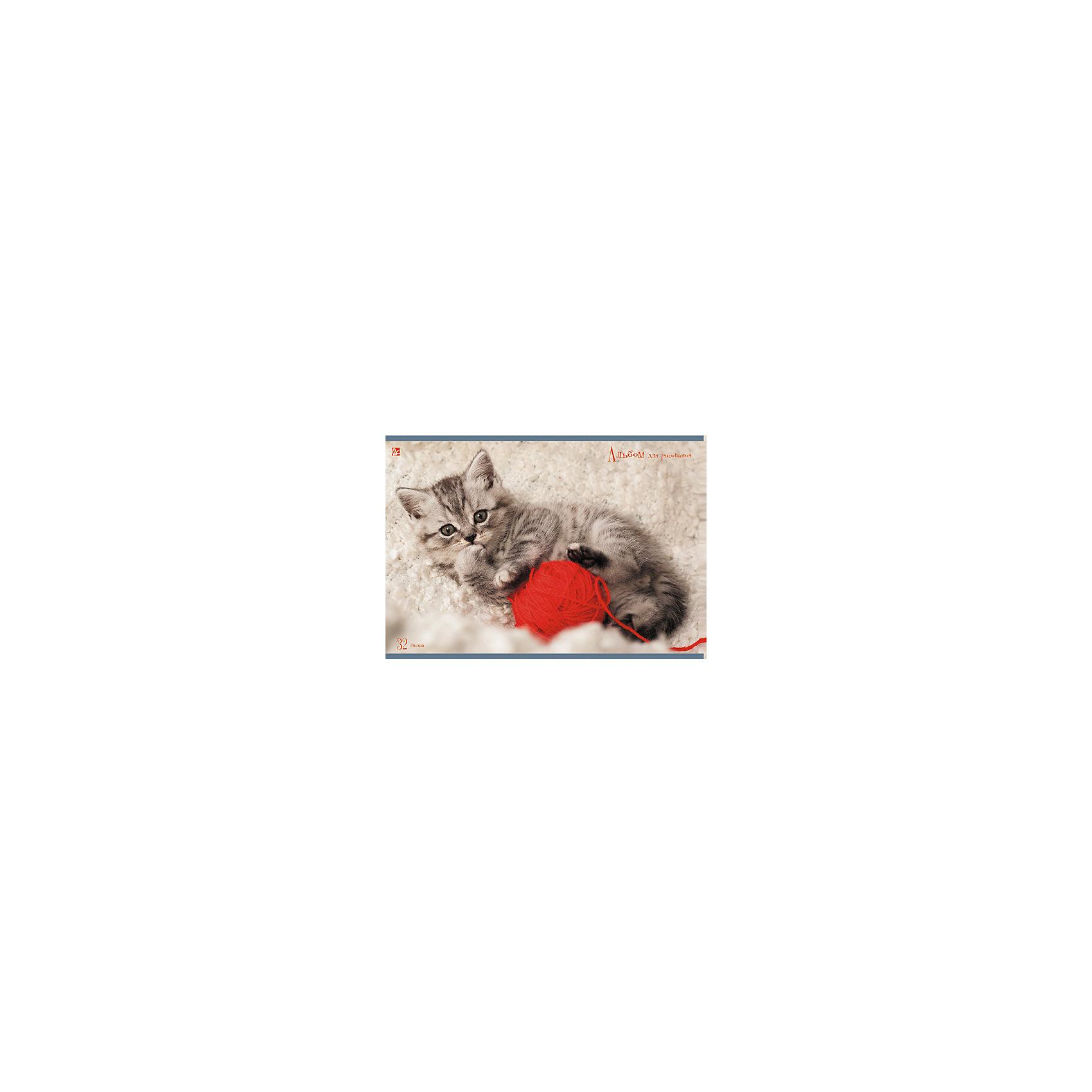 Альбом для рисования Котенок с клубком, 32лБумажная продукция<br>Альбом Котенок с клубком с очаровательной обложкой несомненно станет лучшим помощником ребенка в создании красивых рисунков. Плотная бумага позволит рисовать без лишних усилий, не боясь запачкать другие листы. Прекрасно подойдет для детского творчества!<br><br>Дополнительная информация:<br>Количество листов: 32<br>Скрепление: скрепка.<br>Обложка: мелованный картон.<br>Бумага: офсет, плотностью 110 г/м2.<br>Вы можете приобрести альбом Котенок с клубком в нашем интернет-магазине.<br><br>Ширина мм: 210<br>Глубина мм: 297<br>Высота мм: 10<br>Вес г: 208<br>Возраст от месяцев: 72<br>Возраст до месяцев: 144<br>Пол: Унисекс<br>Возраст: Детский<br>SKU: 4942442