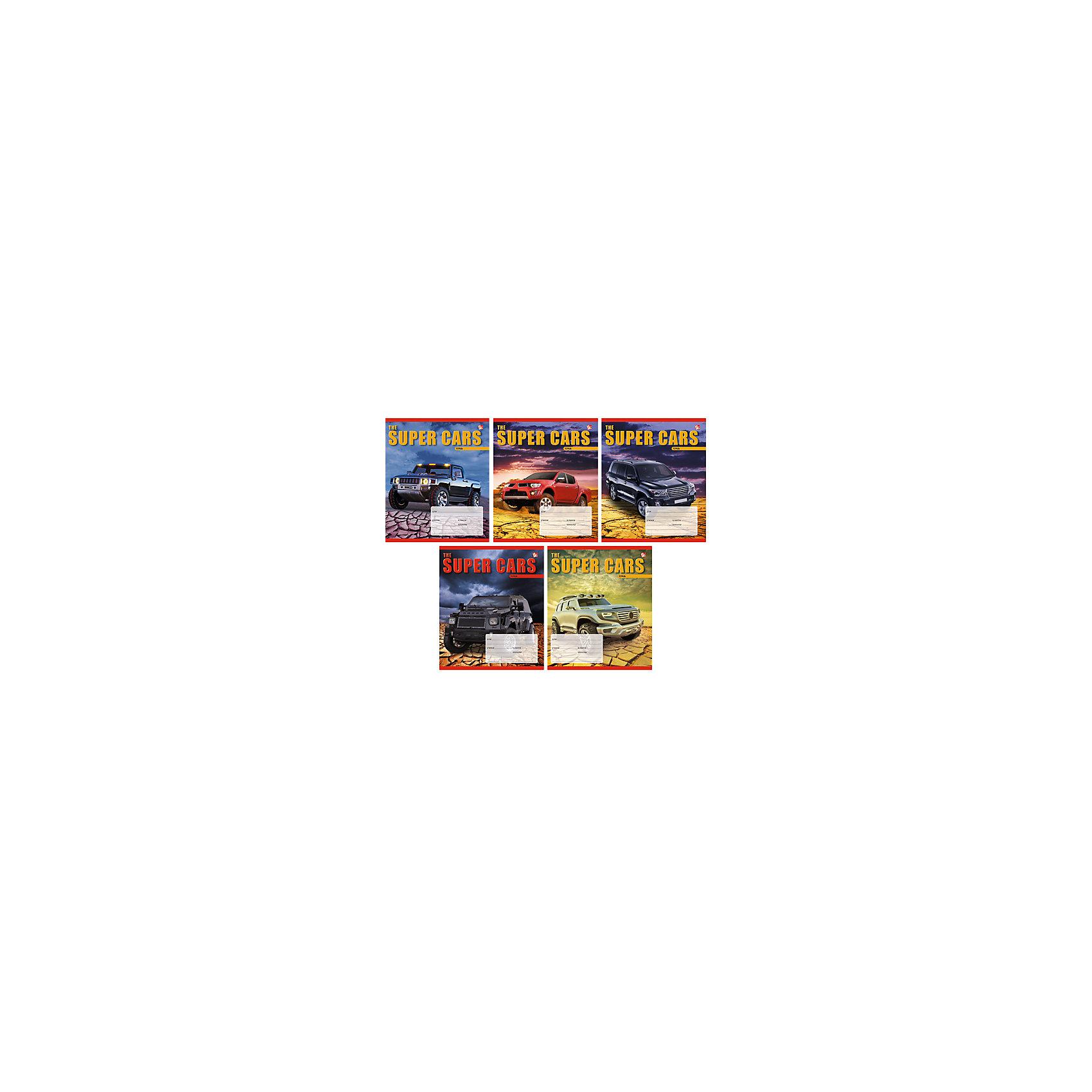 Тетрадь в клетку Суперавтомобили, 12л, 5 штСуперавтомобили - замечательный набор тетрадей в клетку. В каждой тетради 12 листов, обложки с разным оформлением с самыми крутыми машинами. С такими тетрадками ребенок будет ходить в школу с удовольствием!<br><br>Дополнительная информация:<br>Обложка: мелованный картон<br>Количество листов: 12<br>Количество тетрадей: 5<br>Скрепление: скрепка<br>Бумага: офсет, плотностью 60 г/м2<br>Тетради в клетку Суперавтомобили можно купить в нашем интернет-магазине.<br><br>Ширина мм: 210<br>Глубина мм: 148<br>Высота мм: 3<br>Вес г: 39<br>Возраст от месяцев: 72<br>Возраст до месяцев: 2147483647<br>Пол: Унисекс<br>Возраст: Детский<br>SKU: 4942486