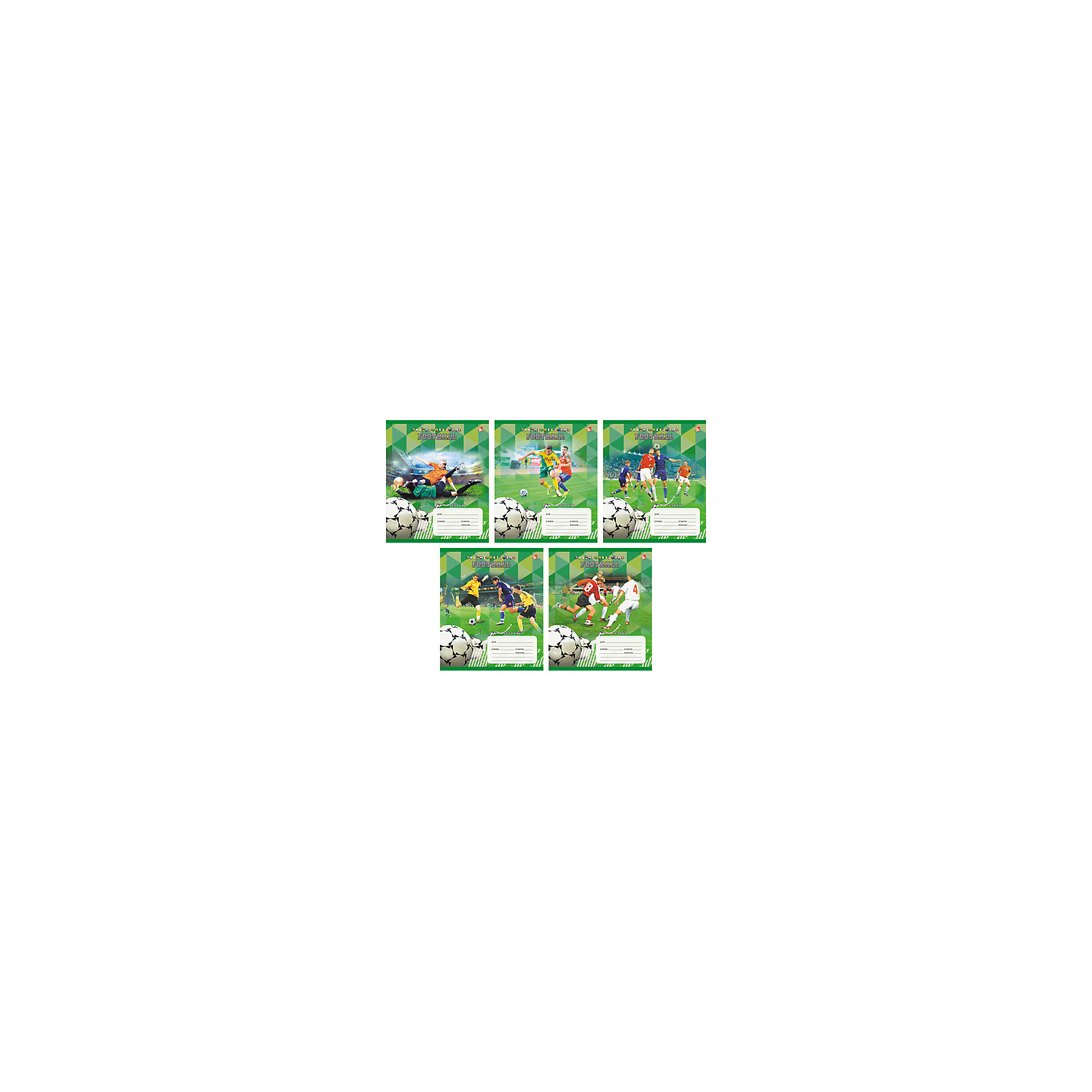 Тетрадь в клетку  Футбол, 12лФутбол - замечательный набор тетрадей в клетку. В каждой тетради 12 листов, обложки с разным оформлением с изображением лучших футбольных моментов. С такими тетрадками ребенок будет ходить в школу с удовольствием!<br><br>Дополнительная информация:<br>Обложка: мелованный картон<br>Количество листов: 12<br>Скрепление: скрепка<br>Бумага: офсет, плотностью 60 г/м2<br>Тетради в клетку Футбол можно купить в нашем интернет-магазине.<br><br>Ширина мм: 210<br>Глубина мм: 148<br>Высота мм: 3<br>Вес г: 39<br>Возраст от месяцев: 72<br>Возраст до месяцев: 2147483647<br>Пол: Унисекс<br>Возраст: Детский<br>SKU: 4942487