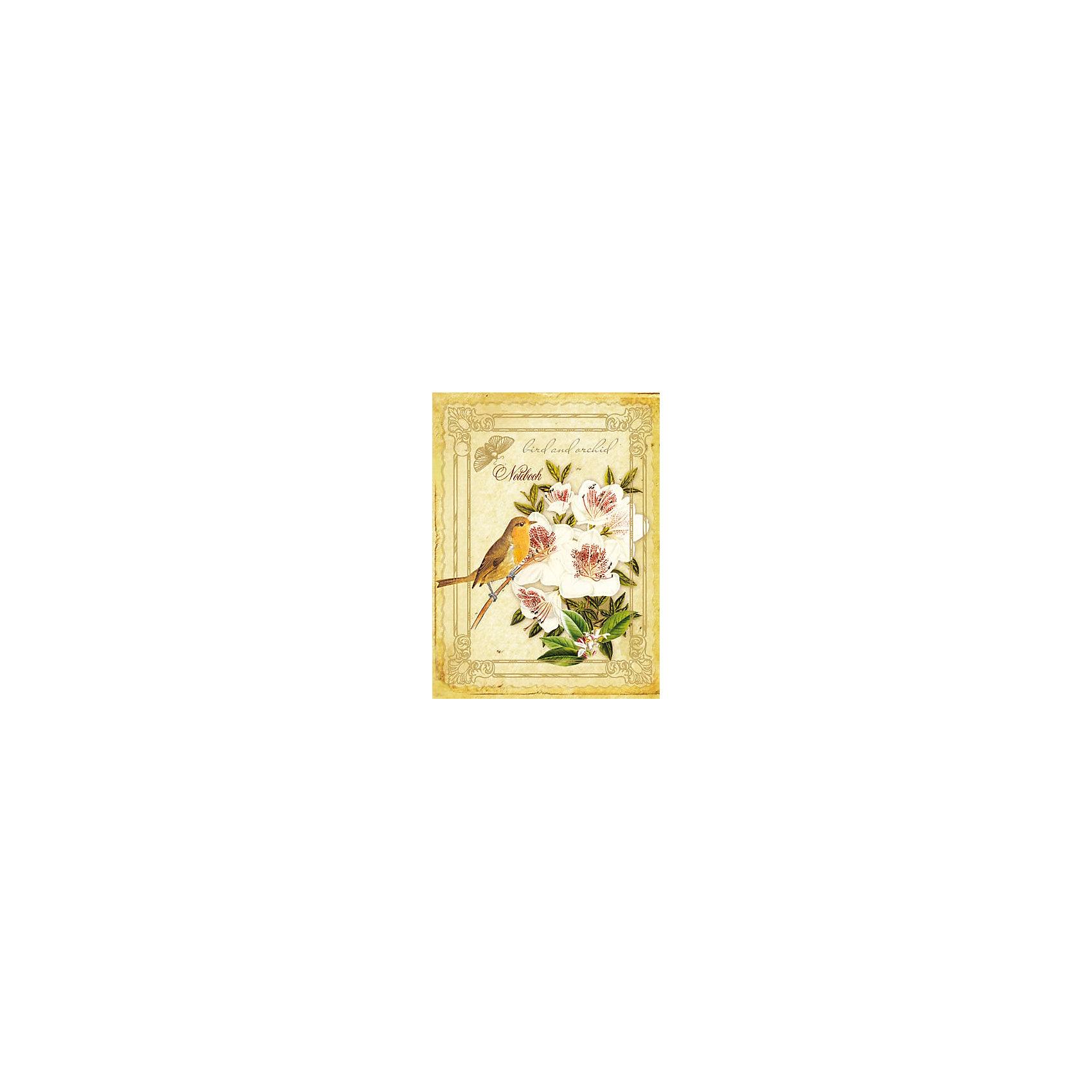 Ежедневник А5 недатированный Орхидеи и птицаСказочно красивый недатированный ежедневник будет прекрасным подарком к любому празднику!<br><br>Дополнительная информация:<br><br>- Формат: А5.<br>- Линовка: линия.<br>- Количество листов: 240<br>- Крепление: книжное (прошивка).<br>- Обложка: твердая.<br>- Материал: бумага, картон.<br>- Размер упаковки: 20,5х15,5х1,5 см.<br>- Вес в упаковке: 340 г.<br><br>Купить ежедневник недатированный Орхидеи и птица можно в нашем магазине.<br><br>Ширина мм: 205<br>Глубина мм: 155<br>Высота мм: 15<br>Вес г: 340<br>Возраст от месяцев: 72<br>Возраст до месяцев: 2147483647<br>Пол: Унисекс<br>Возраст: Детский<br>SKU: 4943504