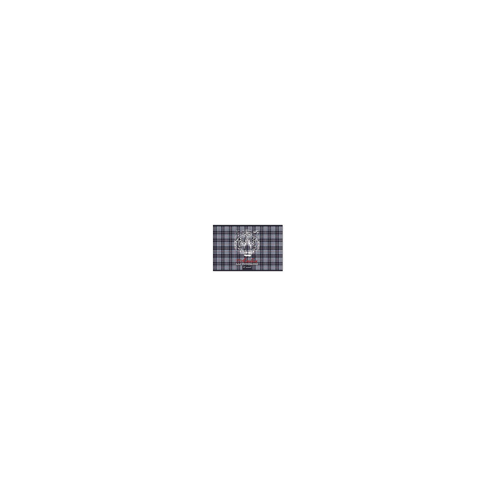 Феникс+ Альбом для рисования Тигр на шотландке, 40л black note альбом для рисования на черной бумаге