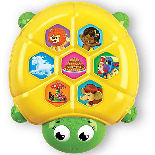 Плеер ЧерепахаДругие музыкальные инструменты<br>Плеер в виде очаровательной черепахи понравится всем малышам! Играй с яркой черепашкой, нажимай на кнопочки, слушай любимые мелодии! <br>Прекрасный подарок на любой праздник. <br><br>Дополнительная информация:<br><br>- Материал: пластик. <br>- Размер: 11х11 см. <br>- Элемент питания: ААА батарейки (в комплекте).<br>- Регулировка громкости. <br>- 7 песенок: Песня львёнка и Черепахи, Чунга-чанга, Каравай, Облака, Песенка паровозика, Веселая карусель, Песенка Мамонтенка. <br><br>Плеер Черепаха можно купить в нашем магазине.<br>Ширина мм: 19; Глубина мм: 19; Высота мм: 19; Вес г: 120; Возраст от месяцев: 24; Возраст до месяцев: 48; Пол: Унисекс; Возраст: Детский; SKU: 4951744;