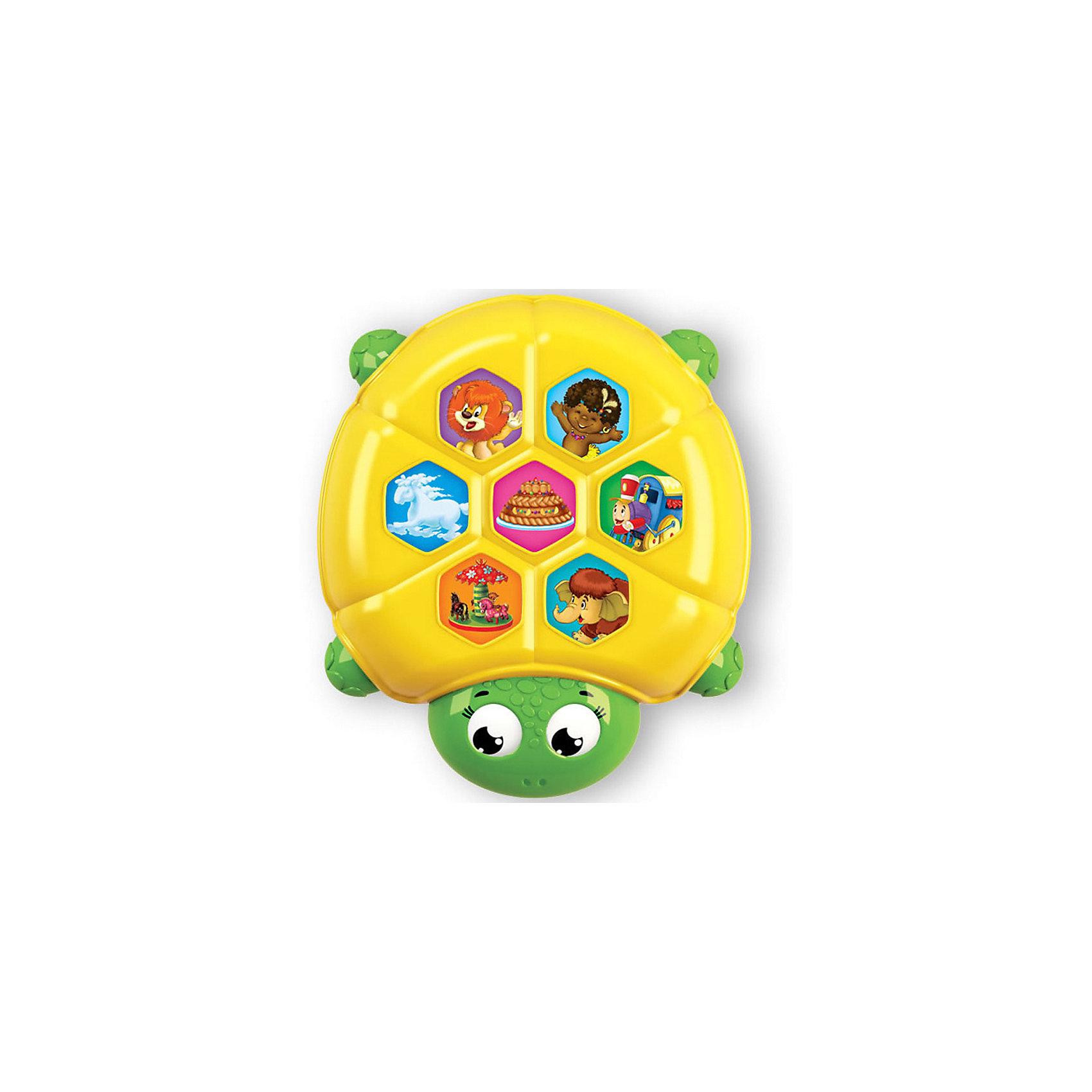 Плеер ЧерепахаПлеер в виде очаровательной черепахи понравится всем малышам! Играй с яркой черепашкой, нажимай на кнопочки, слушай любимые мелодии! <br>Прекрасный подарок на любой праздник. <br><br>Дополнительная информация:<br><br>- Материал: пластик. <br>- Размер: 11х11 см. <br>- Элемент питания: ААА батарейки (в комплекте).<br>- Регулировка громкости. <br>- 7 песенок: Песня львёнка и Черепахи, Чунга-чанга, Каравай, Облака, Песенка паровозика, Веселая карусель, Песенка Мамонтенка. <br><br>Плеер Черепаха можно купить в нашем магазине.<br><br>Ширина мм: 19<br>Глубина мм: 19<br>Высота мм: 19<br>Вес г: 120<br>Возраст от месяцев: 24<br>Возраст до месяцев: 48<br>Пол: Унисекс<br>Возраст: Детский<br>SKU: 4951744