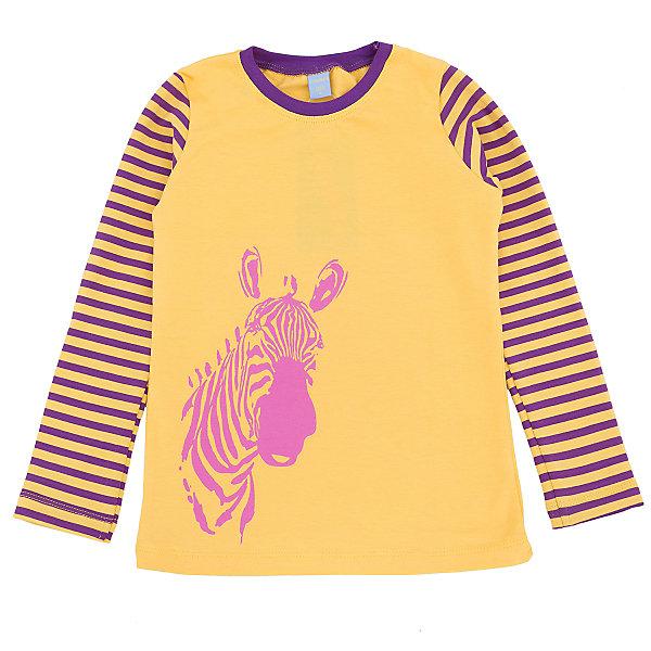 Футболка с длинным рукавом для девочки DAUBERФутболки с длинным рукавом<br>Джемпер для девочки DAUBER<br><br>Характеристики:<br><br>• Состав: 95%хлопок, 5% лайкра.<br>• Цвет: желтый.<br>• Материал: трикотаж.<br><br>Джемпер для девочки от российского бренда DAUBER.<br>Модный трикотажный джемпер желтого цвета выполнен из хлопкового трикотажа. Джемпер украшен оригинальным фиолетовым принтом в виде головы зебры и полосками на рукавах. В таком джемпере ваша девочка будет чувствовать себя комфортно и уютно как дома, так и на улице.<br><br>Джемпер для девочки DAUBER, можно купить в нашем интернет - магазине.<br>Ширина мм: 190; Глубина мм: 74; Высота мм: 229; Вес г: 236; Цвет: желтый; Возраст от месяцев: 24; Возраст до месяцев: 36; Пол: Женский; Возраст: Детский; Размер: 98,116,110,104; SKU: 4953336;