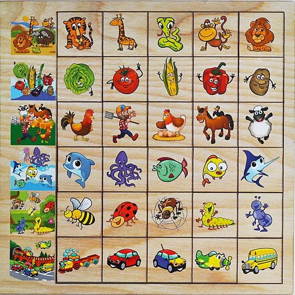 Развивающая игрушка: игра Ассоциации, Мастер игрушекОкружающий мир<br>Ассоциации - развивающая игра для детей. В набор входят 30 фишек и рамка. Ребенку предстоит заполнить ряд фишками, соответствующими основной картинке. Эта игра хорошо развивает логику и учит ребенка классификации.<br><br>Дополнительная информация:<br>В наборе: 30 фишек, рамка<br>Материал: дерево<br>Размер: 30х0,6х30 см<br>Вес: 420 грамм<br>Игру Ассоциации можно приобрести в нашем интернет-магазине.<br><br>Ширина мм: 300<br>Глубина мм: 6<br>Высота мм: 300<br>Вес г: 420<br>Возраст от месяцев: 36<br>Возраст до месяцев: 120<br>Пол: Унисекс<br>Возраст: Детский<br>SKU: 4953663