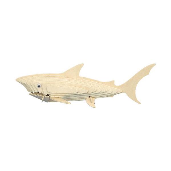 Акула, Мир деревянных игрушек