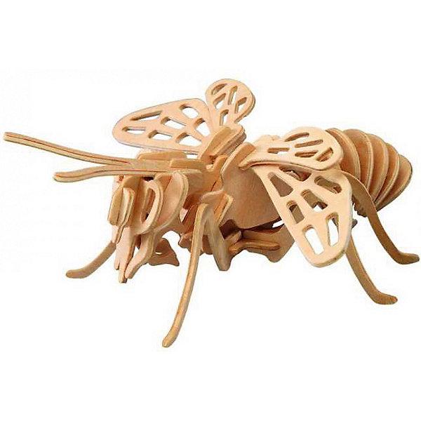 Цикада, Мир деревянных игрушекДеревянные модели<br>Бренд Мир деревянных игрушек дает ребенку возможность самому сделать красивую деревянную фигуру! Специально для любящих творчество и интересующихся животным миром были разработаны эти 3D-пазлы. Из них получаются красивые очень реалистичные фигуры, которые могут стать украшением комнаты.<br>Собирая их, ребенок будет учиться соотносить фигуры, развивать пространственное мышление, память и мелкую моторику. А раскрашивая готовое произведение, дети научатся подбирать цвета и будут развивать художественные навыки. Этот набор произведен из качественных и безопасных для детей материалов - дерево тщательно обработано.<br><br>Дополнительная информация:<br><br>материал: дерево;<br>цвет: бежевый;<br>элементы: две пластины с деталями для сборки;<br>размер игрушки: 10 х 19 х 28  см.<br><br>3D-пазл Цикада от бренда Мир деревянных игрушек можно купить в нашем магазине.<br><br>Ширина мм: 220<br>Глубина мм: 30<br>Высота мм: 180<br>Вес г: 400<br>Возраст от месяцев: 36<br>Возраст до месяцев: 144<br>Пол: Унисекс<br>Возраст: Детский<br>SKU: 4969011