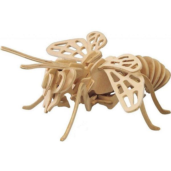 Пчела, Мир деревянных игрушекДеревянные модели<br>Сделать деревянную игрушку самому - какой ребенок откажется от этого?! Специально для любящих творчество и интересующихся животным миром были разработаны эти 3D-пазлы. Из них получаются красивые очень реалистичные фигуры, которые могут стать украшением комнаты.<br>Собирая их, ребенок будет учиться соотносить фигуры, развивать пространственное мышление, память и мелкую моторику. А раскрашивая готовое произведение, дети научатся подбирать цвета и будут развивать художественные навыки. Этот набор произведен из качественных и безопасных для детей материалов - дерево тщательно обработано.<br><br>Дополнительная информация:<br><br>материал: дерево;<br>цвет: бежевый;<br>элементы: пластины с деталями для сборки;<br>размер пластины: 23 х 18 х 1 см.<br><br>3D-пазл Пчела от бренда Мир деревянных игрушек можно купить в нашем магазине.<br><br>Ширина мм: 220<br>Глубина мм: 30<br>Высота мм: 180<br>Вес г: 400<br>Возраст от месяцев: 36<br>Возраст до месяцев: 144<br>Пол: Унисекс<br>Возраст: Детский<br>SKU: 4969013