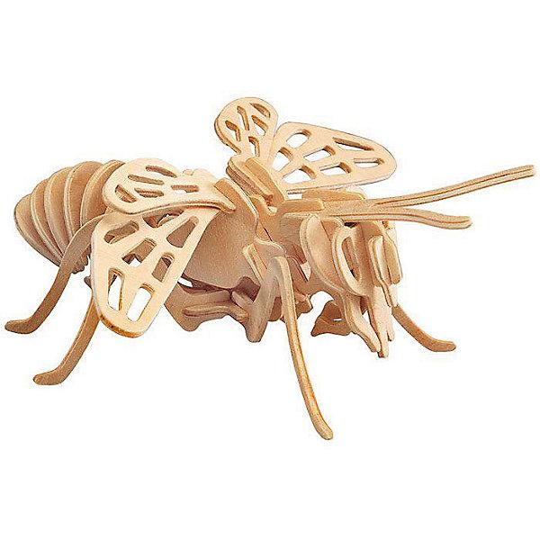 Саранча, Мир деревянных игрушекДеревянные модели<br>Развивать свои способности ребенок может, играя! Специально для любящих творчество и интересующихся животным миром были разработаны эти 3D-пазлы. Из них получаются красивые очень реалистичные фигуры, которые могут стать украшением комнаты.<br>Собирая их, ребенок будет учиться соотносить фигуры, развивать пространственное мышление, память и мелкую моторику. А раскрашивая готовое произведение, дети научатся подбирать цвета и будут развивать художественные навыки. Этот набор произведен из качественных и безопасных для детей материалов - дерево тщательно обработано.<br><br>Дополнительная информация:<br><br>материал: дерево;<br>цвет: бежевый;<br>элементы: четыре пластины с деталями для сборки;<br>размер пластины: 23 х 18 х 1 см.<br><br>3D-пазл Саранча от бренда Мир деревянных игрушек можно купить в нашем магазине.<br>Ширина мм: 220; Глубина мм: 30; Высота мм: 180; Вес г: 300; Возраст от месяцев: 36; Возраст до месяцев: 144; Пол: Унисекс; Возраст: Детский; SKU: 4969019;