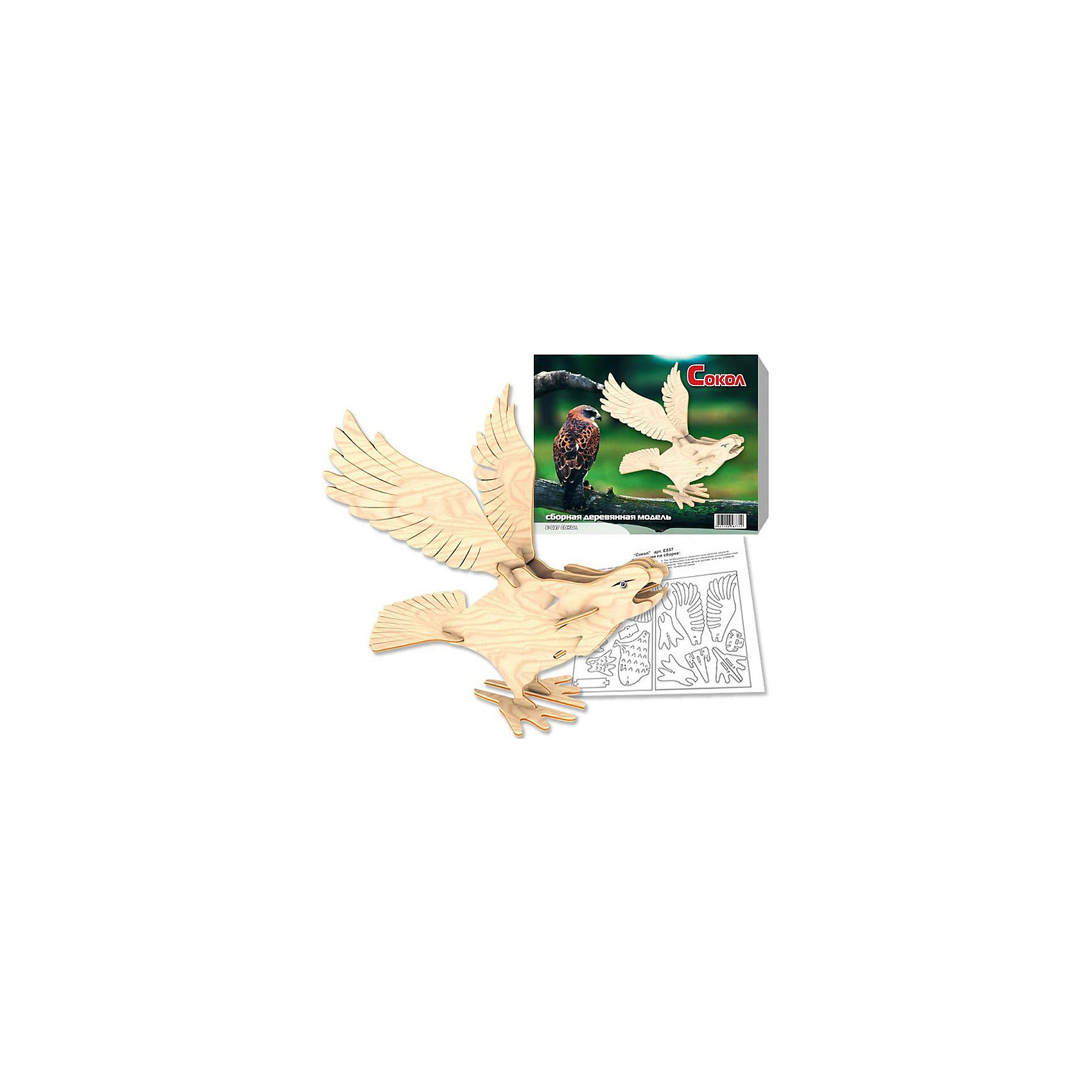 Сокол, Мир деревянных игрушекДеревянные модели<br>Сделать деревянную игрушку самому - какой ребенок откажется от этого?! Специально для любящих творчество и интересующихся животным миром были разработаны эти 3D-пазлы. Из них получаются красивые очень реалистичные фигуры, которые могут стать украшением комнаты.<br>Собирая их, ребенок будет учиться соотносить фигуры, развивать пространственное мышление, память и мелкую моторику. А раскрашивая готовое произведение, дети научатся подбирать цвета и будут развивать художественные навыки. Этот набор произведен из качественных и безопасных для детей материалов - дерево тщательно обработано.<br><br>Дополнительная информация:<br><br>материал: дерево;<br>цвет: бежевый;<br>элементы: пластины с деталями для сборки;<br>размер упаковки: 24 х 19 х 1 см.<br><br>3D-пазл Сокол от бренда Мир деревянных игрушек можно купить в нашем магазине.<br><br>Ширина мм: 220<br>Глубина мм: 30<br>Высота мм: 180<br>Вес г: 200<br>Возраст от месяцев: 36<br>Возраст до месяцев: 144<br>Пол: Унисекс<br>Возраст: Детский<br>SKU: 4969025