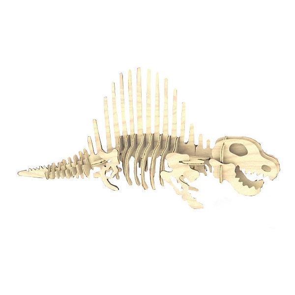 Диметеродон, Мир деревянных игрушекДеревянные модели<br>Удачный вариант подарка для творческого ребенка - этот набор, из которого можно самому сделать красивую деревянную фигуру! Для этого нужно выдавить из пластины с деталями элементы для сборки и соединить их. Специально для любящих творчество и интересующихся вымершими животными были разработаны эти 3D-пазлы. Из них получаются красивые очень реалистичные фигуры, которые могут стать украшением комнаты.<br>Собирая их, ребенок будет учиться соотносить фигуры, развивать пространственное мышление, память и мелкую моторику. А раскрашивая готовое произведение, дети научатся подбирать цвета и будут развивать художественные навыки. Этот набор произведен из качественных и безопасных для детей материалов - дерево тщательно обработано.<br><br>Дополнительная информация:<br><br>материал: дерево;<br>цвет: бежевый;<br>элементы: пластины с деталями для сборки;<br>размер упаковки: 23 х 18 см.<br><br>3D-пазл Диметеродон от бренда Мир деревянных игрушек можно купить в нашем магазине.<br>Ширина мм: 225; Глубина мм: 30; Высота мм: 180; Вес г: 967; Возраст от месяцев: 36; Возраст до месяцев: 144; Пол: Унисекс; Возраст: Детский; SKU: 4969042;