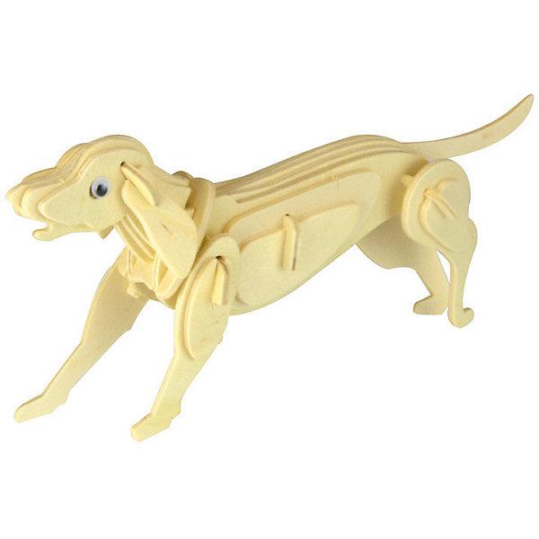 Собака, Мир деревянных игрушекДеревянные модели<br>Развивать свои способности ребенок может, сам собирая деревянные фигуры! Специально для любящих творчество и интересующихся животным миром были разработаны эти 3D-пазлы. Из них получаются красивые очень реалистичные фигуры, которые могут стать украшением комнаты. Для этого нужно выдавить из пластины с деталями элементы для сборки и соединить их. <br>Собирая их, ребенок будет учиться соотносить фигуры, развивать пространственное мышление, память и мелкую моторику. А раскрашивая готовое произведение, дети научатся подбирать цвета и будут развивать художественные навыки. Этот набор произведен из качественных и безопасных для детей материалов - дерево тщательно обработано.<br><br>Дополнительная информация:<br><br>материал: дерево;<br>цвет: бежевый;<br>элементы: пластины с деталями для сборки;<br>размер упаковки: 23 х 18 см.<br><br>3D-пазл Собака от бренда Мир деревянных игрушек можно купить в нашем магазине.<br>Ширина мм: 225; Глубина мм: 30; Высота мм: 180; Вес г: 450; Возраст от месяцев: 36; Возраст до месяцев: 144; Пол: Унисекс; Возраст: Детский; SKU: 4969066;