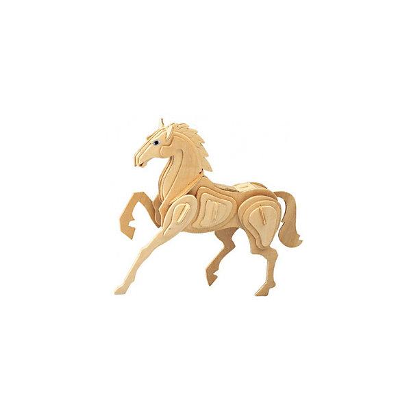 Лошадь (серия М), Мир деревянных игрушекДеревянные модели<br>Отличный вариант подарка для творческого ребенка - этот набор, из которого можно самому сделать красивую деревянную фигуру! Для этого нужно выдавить из пластины с деталями элементы для сборки и соединить их. Из наборов получаются красивые очень реалистичные игрушки, которые могут стать украшением комнаты.<br>Собирая их, ребенок будет учиться соотносить фигуры, развивать пространственное мышление, память и мелкую моторику. А раскрашивая готовое произведение, дети научатся подбирать цвета и будут развивать художественные навыки. Этот набор произведен из качественных и безопасных для детей материалов - дерево тщательно обработано.<br><br>Дополнительная информация:<br><br>материал: дерево;<br>цвет: бежевый;<br>элементы: пластины с деталями для сборки;<br>размер упаковки: 23 х 18 см.<br><br>3D-пазл Лошадь (серия М) от бренда Мир деревянных игрушек можно купить в нашем магазине.<br>Ширина мм: 225; Глубина мм: 30; Высота мм: 180; Вес г: 350; Возраст от месяцев: 36; Возраст до месяцев: 144; Пол: Унисекс; Возраст: Детский; SKU: 4969075;