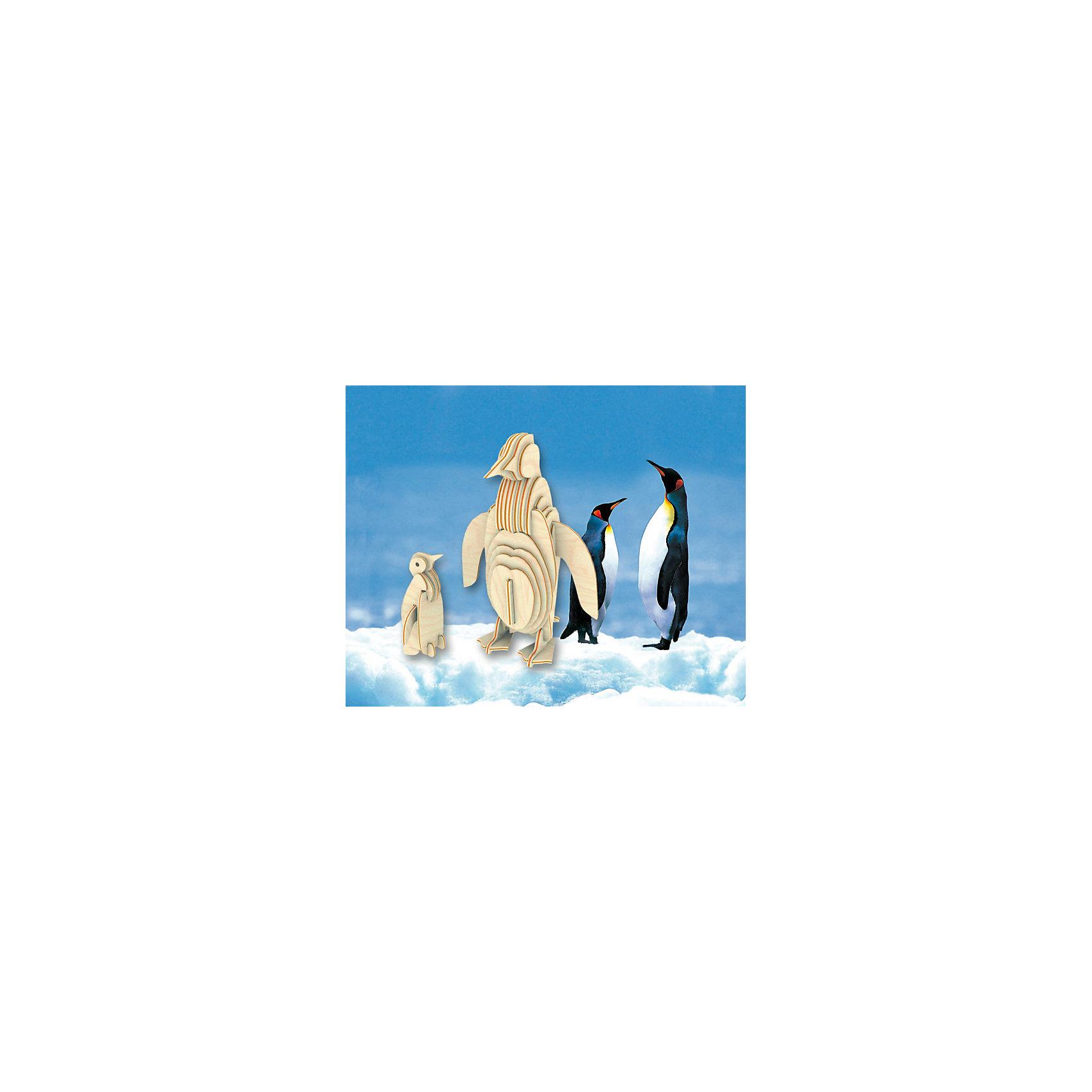 Пингвин, Мир деревянных игрушек