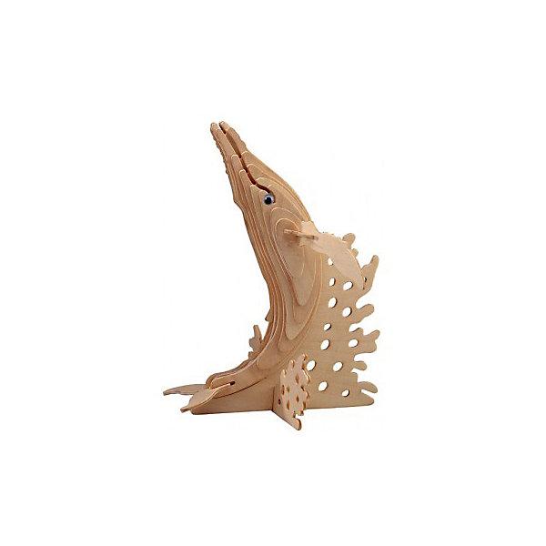 Горбатый кит, Мир деревянных игрушекДеревянные модели<br>Сделать деревянную игрушку самому - какой ребенок откажется от этого?! Специально для любящих творчество и интересующихся животным миром были разработаны эти 3D-пазлы. Из них получаются красивые очень реалистичные фигуры, которые могут стать украшением комнаты.<br>Собирая их, ребенок будет учиться соотносить фигуры, развивать пространственное мышление, память и мелкую моторику. А раскрашивая готовое произведение, дети научатся подбирать цвета и будут развивать художественные навыки. Этот набор произведен из качественных и безопасных для детей материалов.<br><br>Дополнительная информация:<br><br>материал: дерево;<br>цвет: бежевый;<br>элементы: пластины с деталями, схема сборки;<br>размер упаковки: 23 х 37 см.<br><br>3D-пазл Горбатый кит от бренда Мир деревянных игрушек можно купить в нашем магазине.<br><br>Ширина мм: 350<br>Глубина мм: 50<br>Высота мм: 225<br>Вес г: 450<br>Возраст от месяцев: 36<br>Возраст до месяцев: 144<br>Пол: Унисекс<br>Возраст: Детский<br>SKU: 4969254