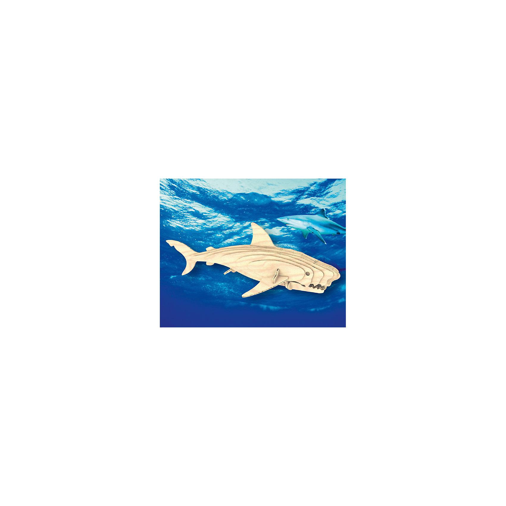 Белая акула, Мир деревянных игрушекУдачный вариант подарка для любящего животных творческого ребенка - этот набор, из которого можно самому сделать красивую деревянную фигуру! Для этого нужно выдавить из пластины с деталями элементы для сборки и соединить их. Из наборов получаются красивые очень реалистичные игрушки, которые могут стать украшением комнаты.<br>Собирая их, ребенок будет развивать пространственное мышление, память и мелкую моторику. А раскрашивая готовое произведение, дети научатся подбирать цвета и будут развивать художественные навыки. Этот набор произведен из качественных и безопасных для детей материалов - дерево тщательно обработано.<br><br>Дополнительная информация:<br><br>материал: дерево;<br>цвет: бежевый;<br>элементы: пластины с деталями, схема сборки;<br>размер упаковки: 23 х 37 см.<br><br>3D-пазл Белая акула от бренда Мир деревянных игрушек можно купить в нашем магазине.<br><br>Ширина мм: 350<br>Глубина мм: 50<br>Высота мм: 225<br>Вес г: 450<br>Возраст от месяцев: 36<br>Возраст до месяцев: 144<br>Пол: Унисекс<br>Возраст: Детский<br>SKU: 4969257