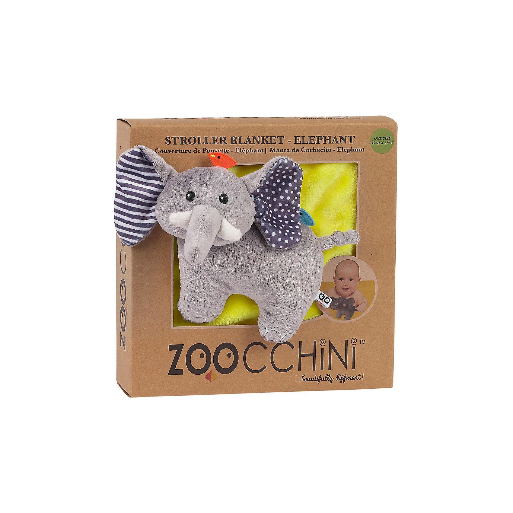 ������ � �������� ����, Zoocchini, �����