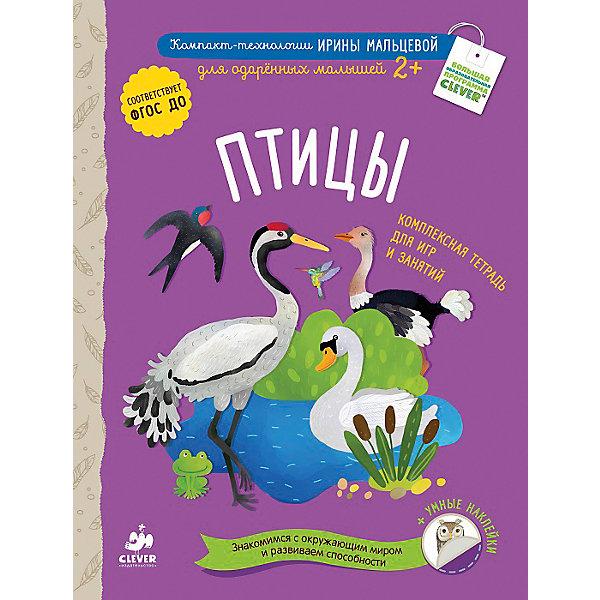 Для одарённых малышей Птицы, И. МальцеваМальцева И.В.<br>Интеллект и словарный запас ребенка нужно развивать - и тогда он в дальнейшем сможет освоить больше полезных навыков. Сделать это занятие интересным и легким поможет данная книга.<br>В ней с помощью ярких картинок можно легко познакомить ребенка со многими видами птиц, дать ему поток новых слов и выражений. В ней - множество увлекательных заданий, с помощью которых ребенок сможет учится считать, рассуждать, сравнивать, анализировать, обобщать, развивать речь, внимание, логику и мелкую моторику, знакомиться с формами. Также малышам очень нравятся задания с наклейками, которые идут в комплекте.<br><br>Дополнительная информация:<br><br>размер: 22 x 29 см;<br>страниц: 32;<br>мягкая обложка.<br><br>Книгу Для одарённых малышей Птицы, И. Мальцева И. можно купить в нашем интернет-магазине.<br><br>Ширина мм: 290<br>Глубина мм: 220<br>Высота мм: 8<br>Вес г: 290<br>Возраст от месяцев: 0<br>Возраст до месяцев: 36<br>Пол: Унисекс<br>Возраст: Детский<br>SKU: 4976140