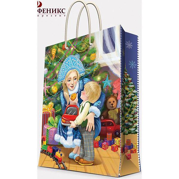 Подарочный пакет Снегурочка с малышом 26*32,4*12,7 смДетские подарочные пакеты<br>Новый год - самый любимый праздник у многих детей и взрослых.  Праздничное настроение создает украшенный дом, наряженная ёлка, запах мандаринов, предновогодняя суета и, конечно же, подарки! Чтобы сделать момент вручения приятнее, нужен красивый подарочный пакет.<br>Этот пакет украшен симпатичным универсальным рисунком, поэтому в него можно упаковать подарок и родственнику, и коллеге. Он сделан из безопасного для детей, прочного, но легкого, материала. Создайте с ним праздничное настроение себе и близким!<br><br>Дополнительная информация:<br><br>плотность: 140 г/м2;<br>размер: 26 х 32 х 13 см;<br>с ламинацией;<br>украшен рисунком.<br><br>Подарочный пакет Снегурочка с малышом 26*32,4*12,7 см можно купить в нашем магазине.<br><br>Ширина мм: 260<br>Глубина мм: 324<br>Высота мм: 120<br>Вес г: 74<br>Возраст от месяцев: 36<br>Возраст до месяцев: 2147483647<br>Пол: Унисекс<br>Возраст: Детский<br>SKU: 4981397