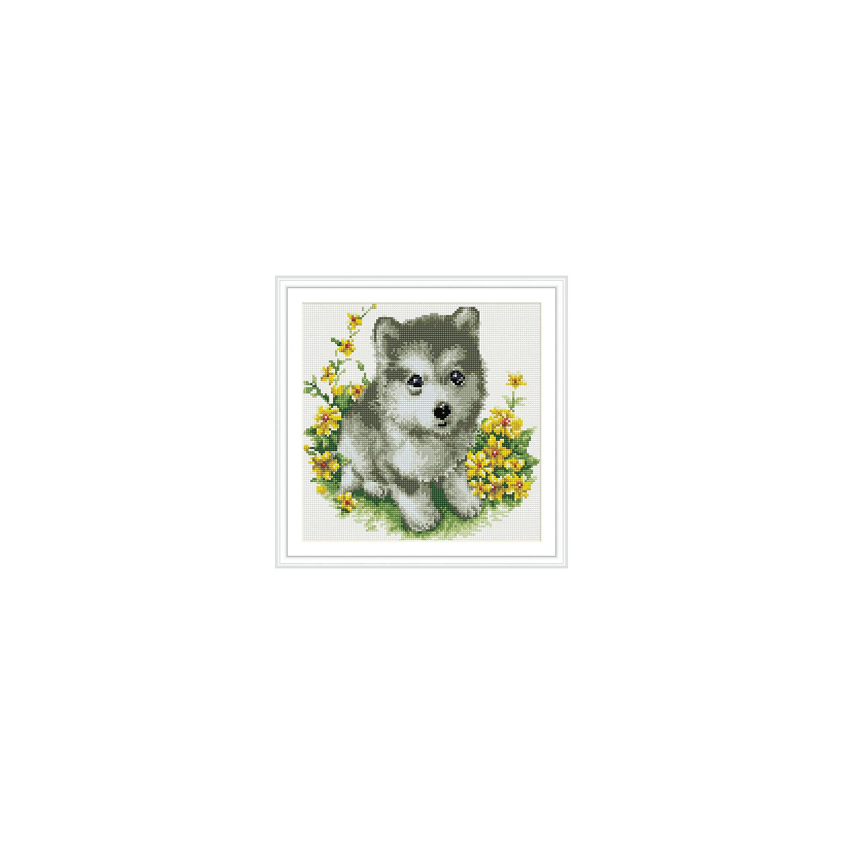 TUKZAR Алмазная мозаика по номерам Собачка 30*30 см, на подрамнике набор для творчества алмазная мозаика анютины глазки 30 см х 30 см