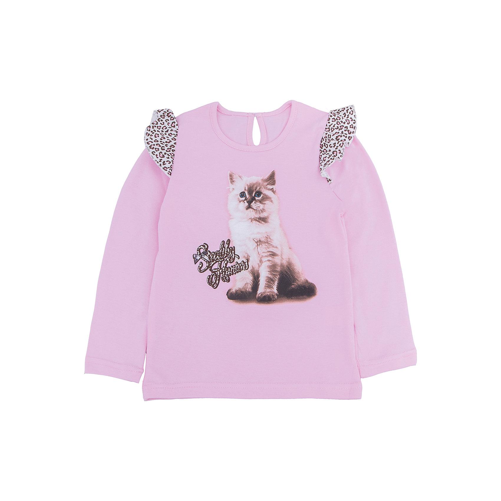 Футболка с длинным рукавом для девочки АпрельФутболка с длинным рукавом для девочки Апрель.<br><br>Характеристики:<br>• состав: 100% хлопок<br>• цвет: розовый<br>• коллекция: Забавные котята<br><br>Очаровательная футболка из коллекции Забавные котята (Апрель) изготовлена из стопроцентного хлопкового полотна. Она имеет круглый ворот, длинный рукав и расширенный к низу силуэт. Сзади модель застегивается на пуговицу. Футболка розового цвета украшена леопардовыми рюшами на рукавах. Спереди модель декорирована принтом с милым котенком. Эта футболка придется по вкусу начинающей моднице!<br><br>Футболку с длинным рукавом Апрель можно купить в нашем интернет-магазине.<br><br>Ширина мм: 230<br>Глубина мм: 40<br>Высота мм: 220<br>Вес г: 250<br>Цвет: розовый<br>Возраст от месяцев: 60<br>Возраст до месяцев: 72<br>Пол: Женский<br>Возраст: Детский<br>Размер: 116,110,98,92,86,104<br>SKU: 5006832