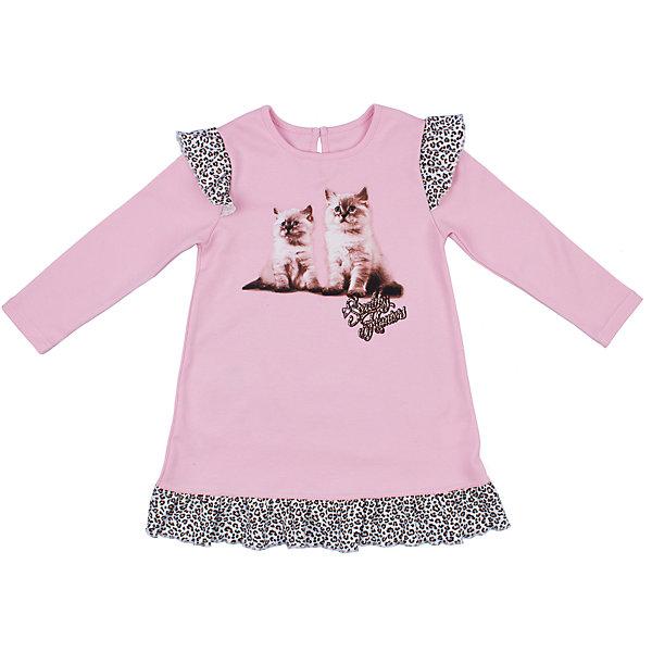 Платье для девочки АпрельПлатья и сарафаны<br>Платье для девочки Апрель.<br><br>Характеристики:<br>• состав: 100% хлопок<br>• цвет: розовый<br>• коллекция: Забавные котята<br><br>Симпатичное платье из коллекции Забавные котята (Апрель) изготовлено из стопроцентного хлопкового полотна. Оно имеет круглый ворот, длинный рукав и расширенный к низу силуэт. Платье розового цвета украшено леопардовыми рюшами по краю подола и на рукавах. Спереди модель декорирована принтом с милыми котятами. Это платье придется по вкусу начинающей моднице!<br><br>Платье для девочки Апрель вы можете купить в нашем интернет-магазине.<br>Ширина мм: 236; Глубина мм: 16; Высота мм: 184; Вес г: 177; Цвет: розовый; Возраст от месяцев: 48; Возраст до месяцев: 60; Пол: Женский; Возраст: Детский; Размер: 104,86,116,98,92,110; SKU: 5006924;