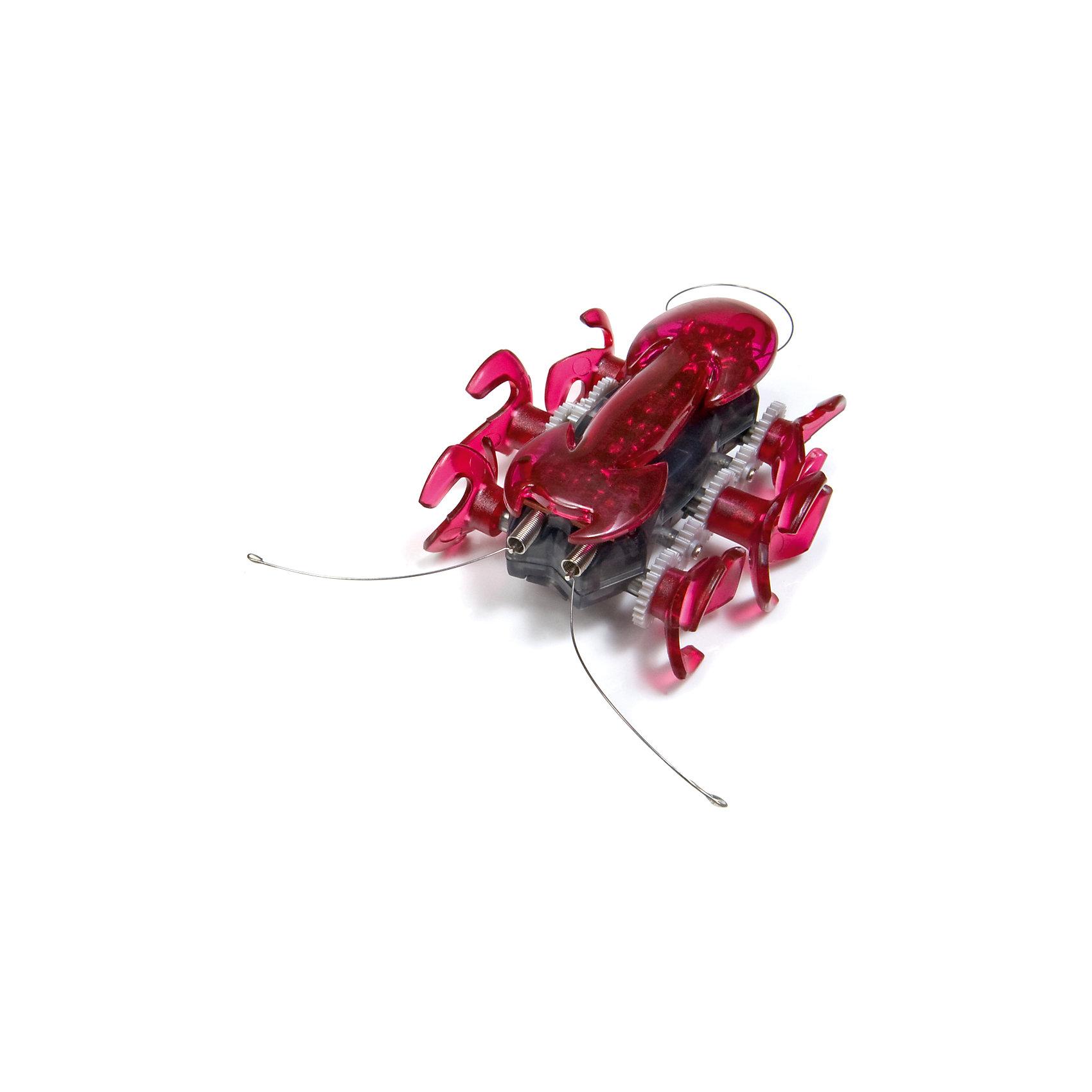 - Микро-робот Муравей, малиновый, Hexbug hexbug набор нано хэбитат
