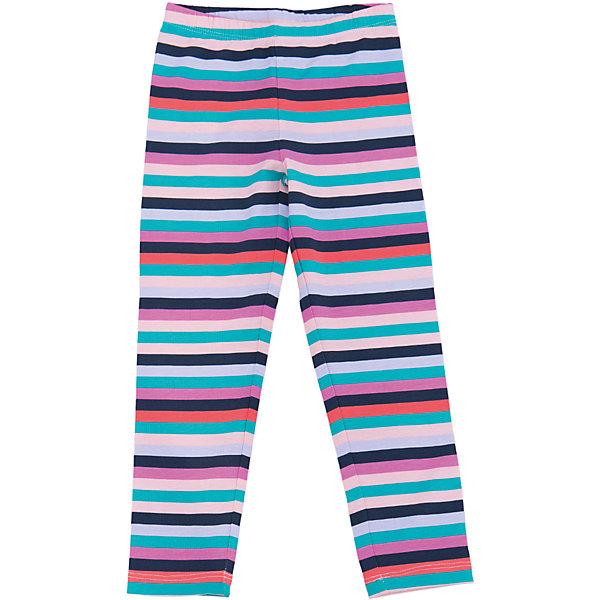 Леггинсы для девочки SELAЛеггинсы<br>Леггинсы - незаменимая вещь в детском гардеробе. Эта модель отлично сидит на ребенке, она сшита из приятного на ощупь материала, натуральный хлопок не вызывает аллергии и обеспечивает ребенку комфорт. Модель станет отличной базовой вещью, которая будет уместна в различных сочетаниях.<br>Одежда от бренда Sela (Села) - это качество по приемлемым ценам. Многие российские родители уже оценили преимущества продукции этой компании и всё чаще приобретают одежду и аксессуары Sela.<br><br>Дополнительная информация:<br><br>материал: хлопок 95%, эластан 5%;<br>эластичный материал;<br>резинка на поясе.<br><br>Леггинсы для девочки от бренда Sela можно купить в нашем интернет-магазине.<br><br>Ширина мм: 215<br>Глубина мм: 88<br>Высота мм: 191<br>Вес г: 336<br>Цвет: розовый<br>Возраст от месяцев: 18<br>Возраст до месяцев: 24<br>Пол: Женский<br>Возраст: Детский<br>Размер: 92,110,116,98,104<br>SKU: 5008099